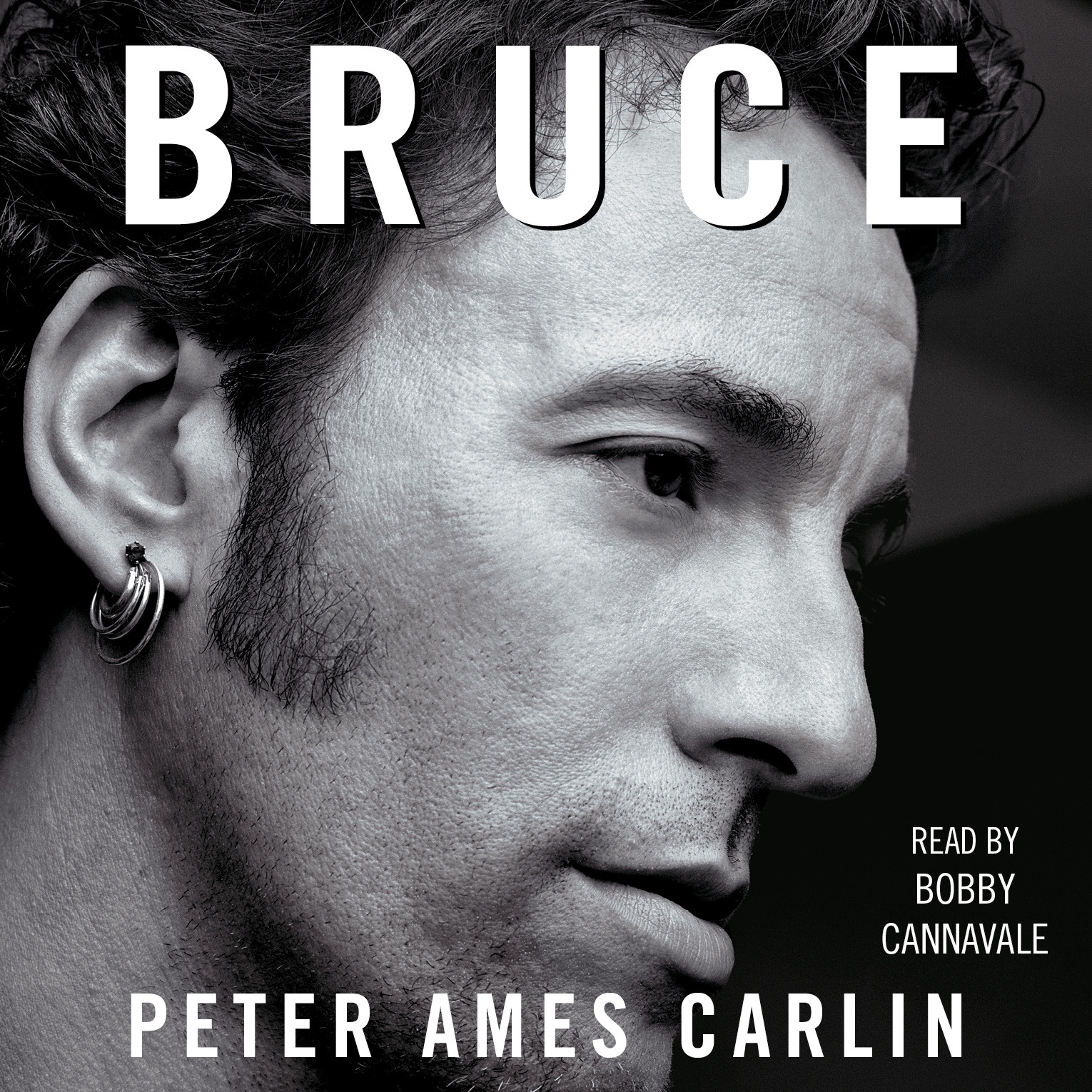 Printable Bruce Audiobook Cover Art