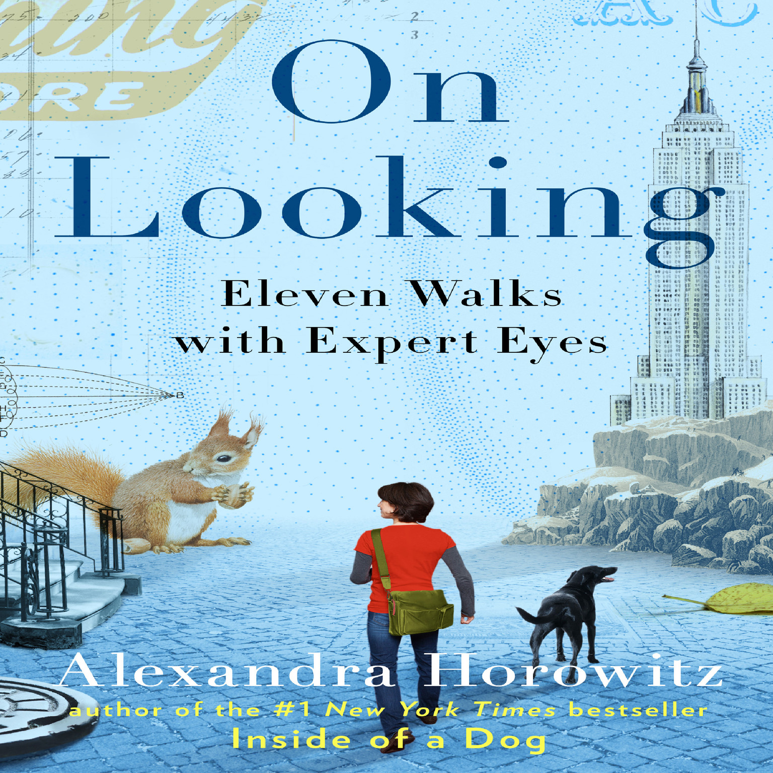Printable On Looking: Eleven Walks with Expert Eyes Audiobook Cover Art