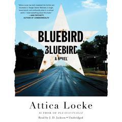 Bluebird, Bluebird Audiobook, by Attica Locke