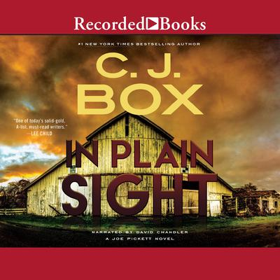 In Plain Sight Audiobook, by