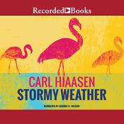 Stormy Weather, by Carl Hiaase