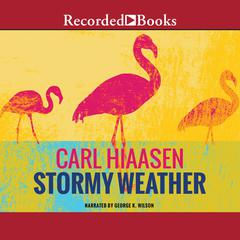 Stormy Weather Audiobook, by Carl Hiaasen