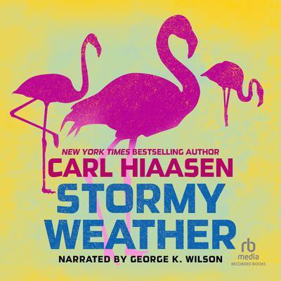 Stormy Weather Audiobook, by Carl Hiaasen