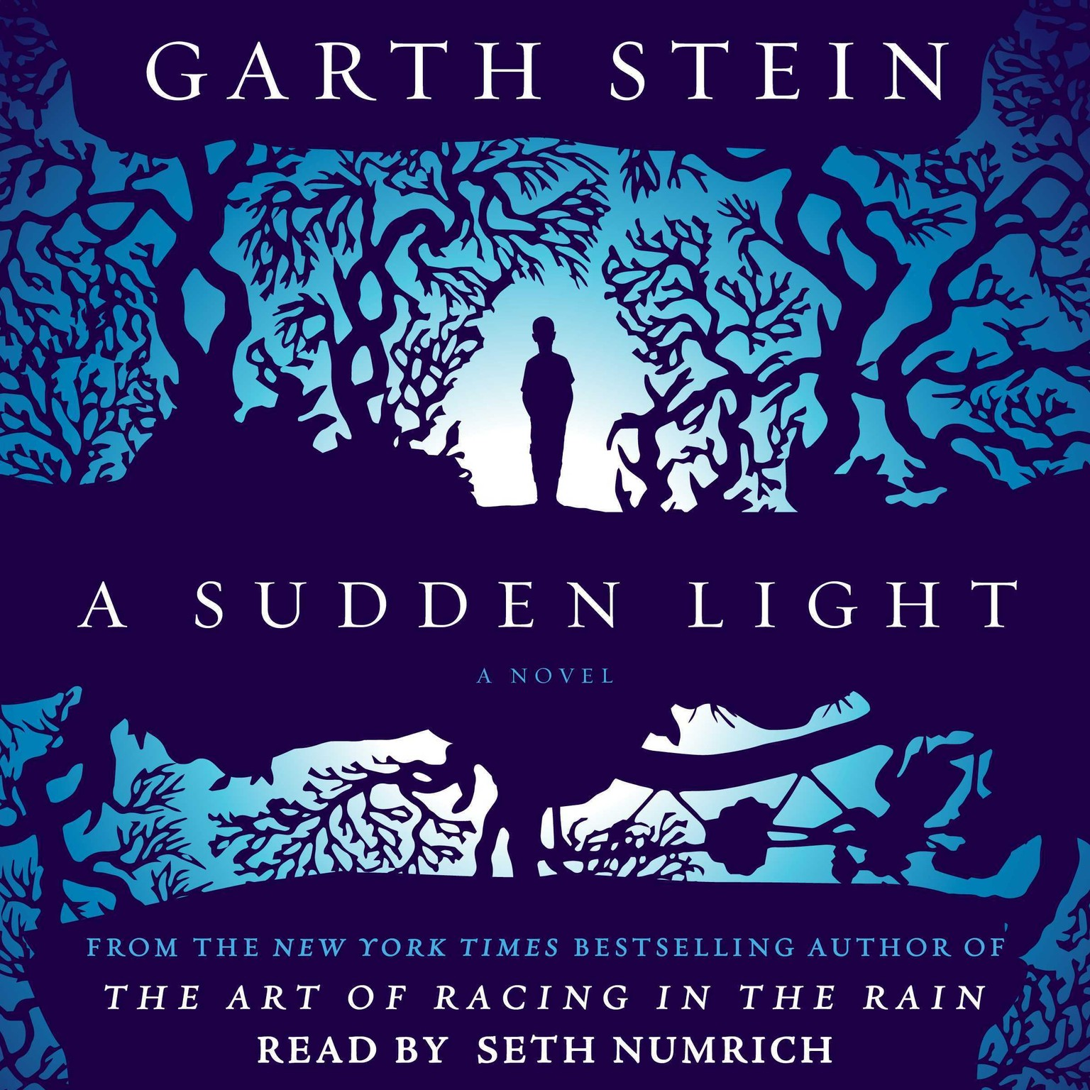 Printable A Sudden Light: A Novel Audiobook Cover Art