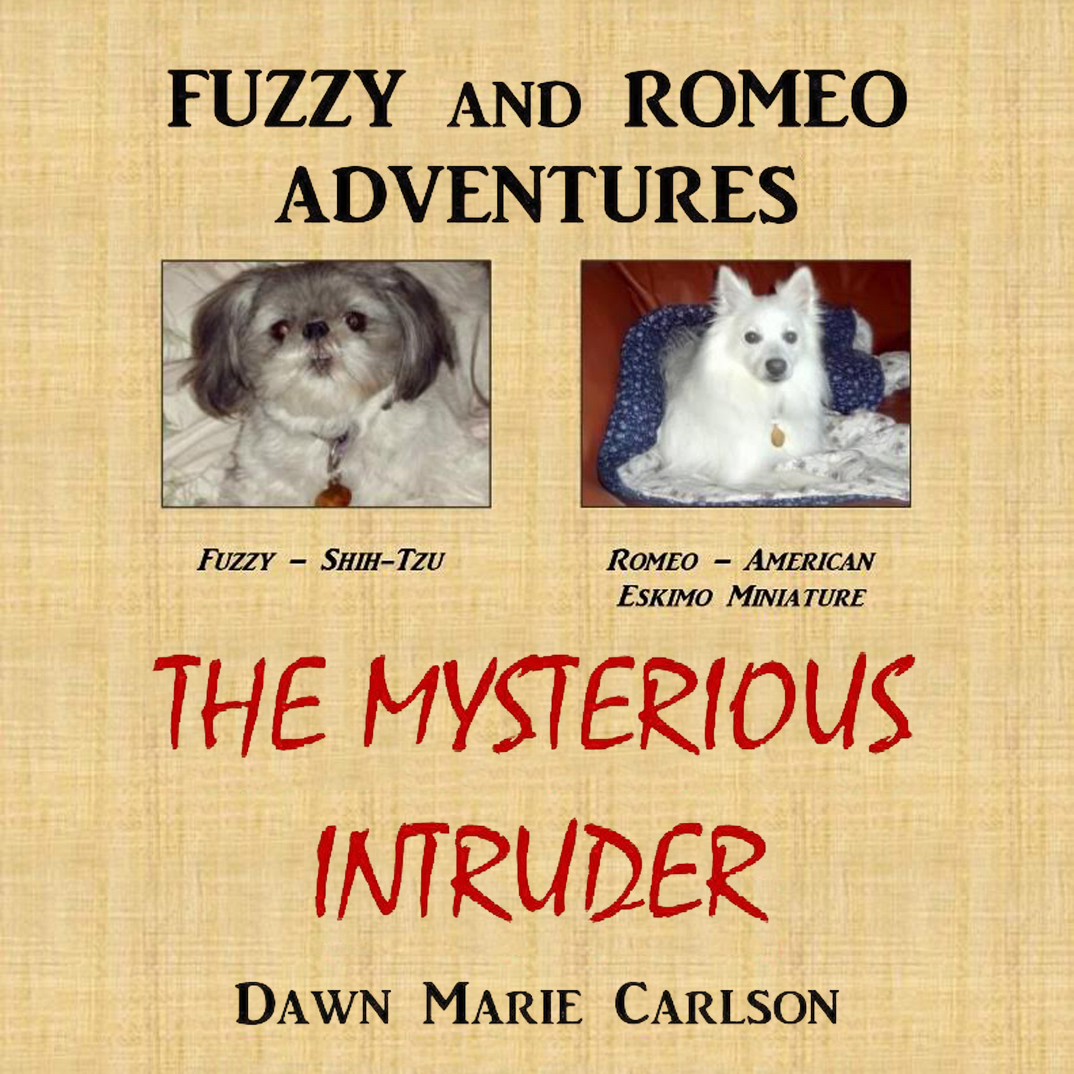 Printable Fuzzy and Romeo Adventures: The Mysterious Intruder Audiobook Cover Art