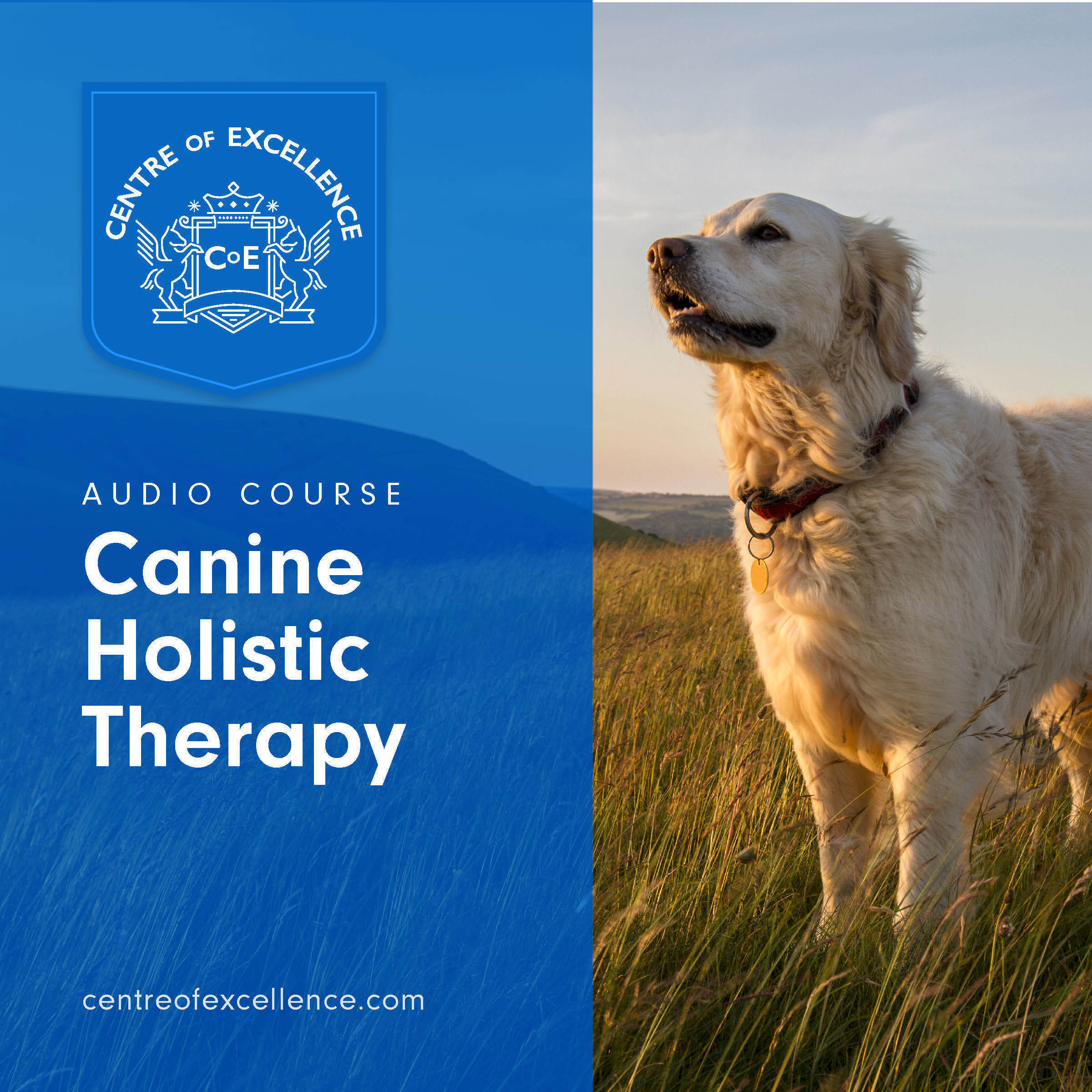 Printable Canine Holistic Therapy Audiobook Cover Art