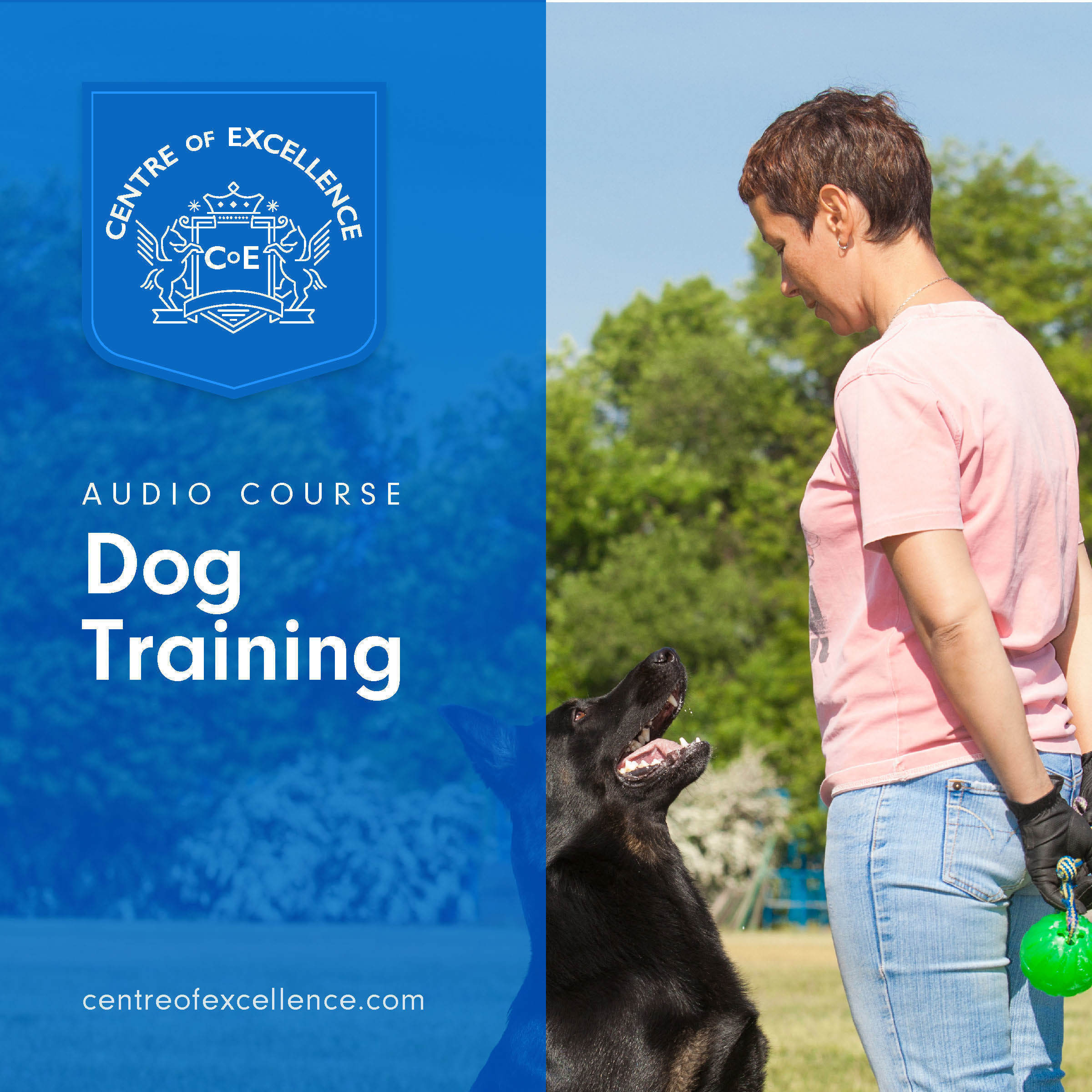 Printable Dog Training Audiobook Cover Art