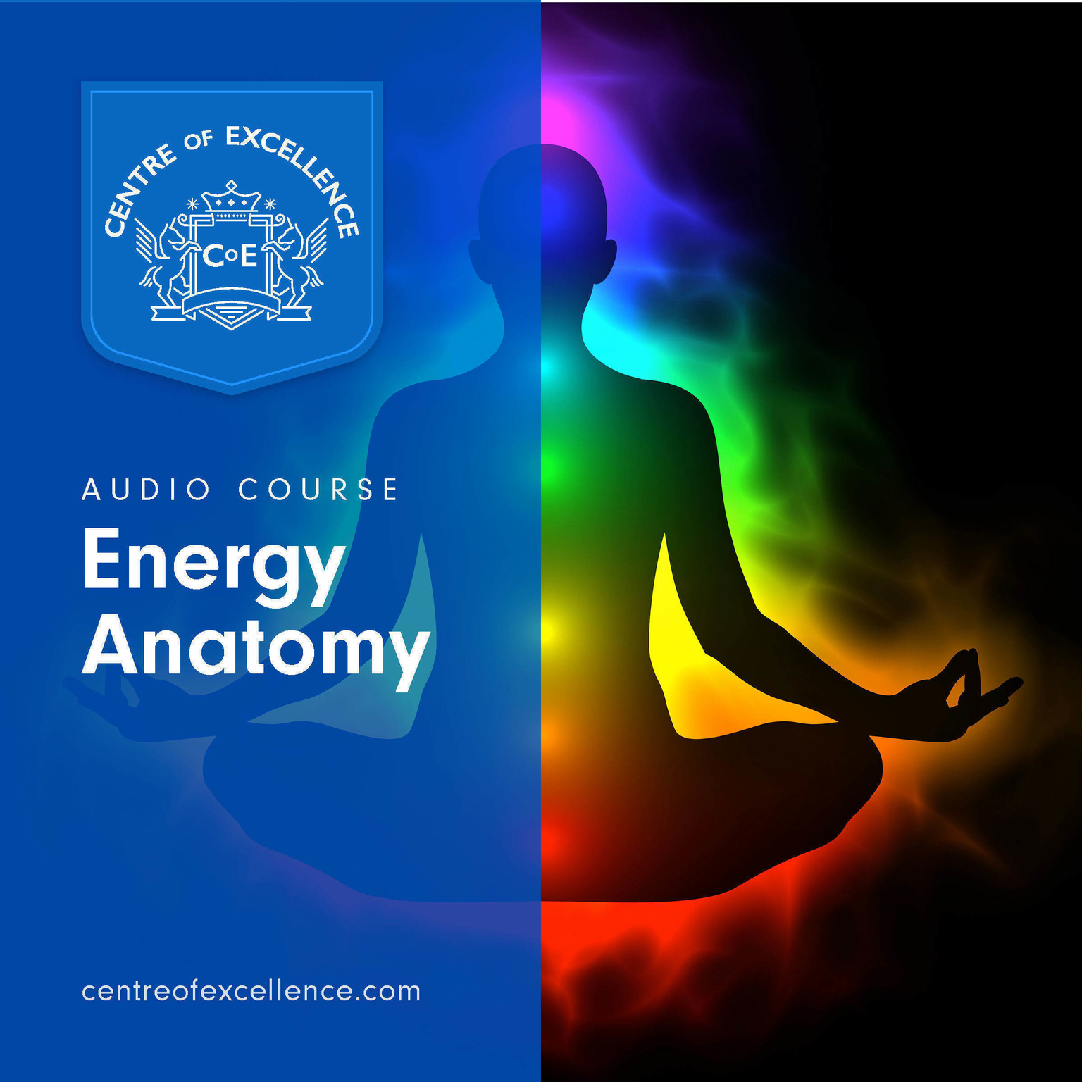 Printable Energy Anatomy Audiobook Cover Art
