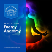 Energy Anatomy Audiobook, by Centre of Excellence