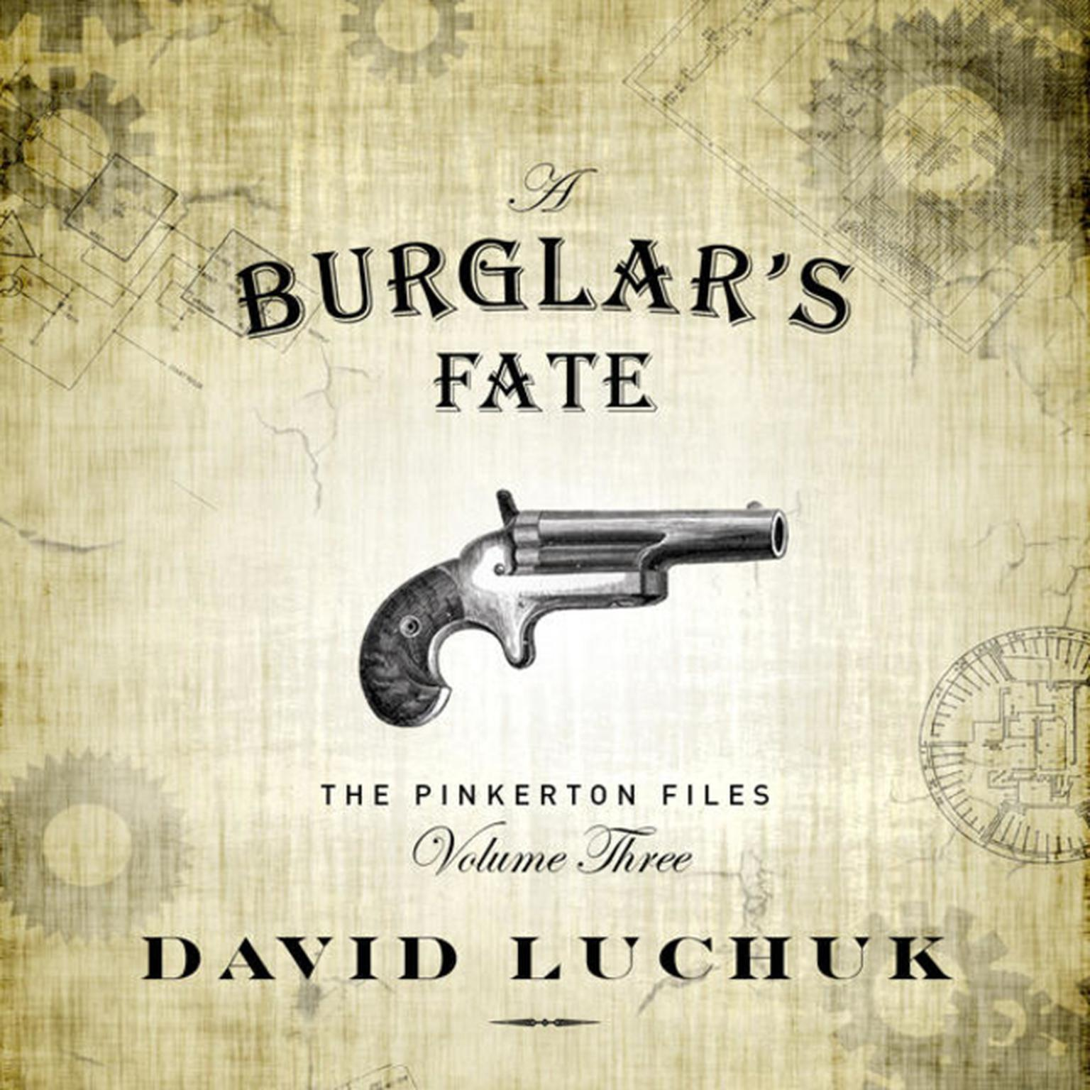 Printable Burglar's Fate, A : The Pinkerton Files, Volume 3 Audiobook Cover Art