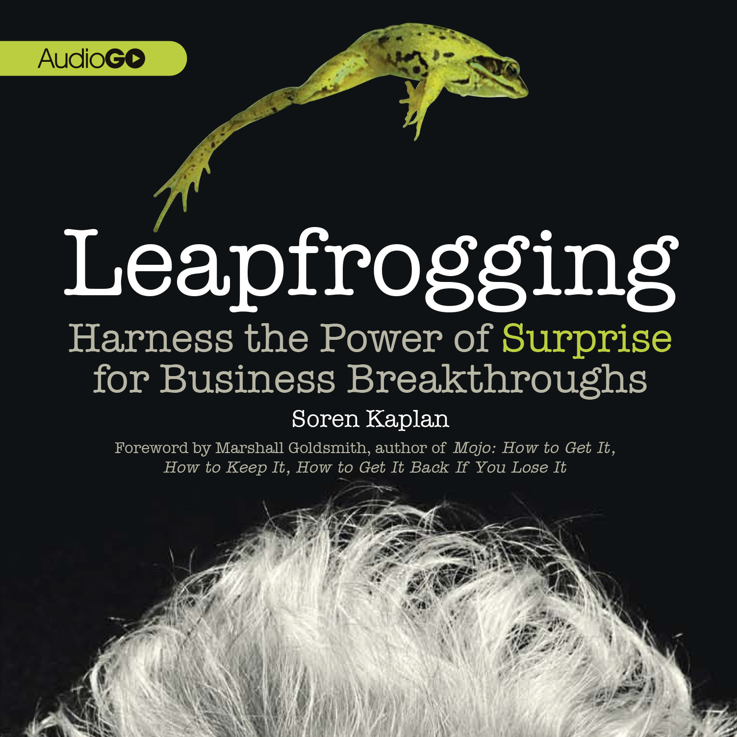 Printable Leapfrogging: Harness the Power of Surprise for Business Breakthroughs Audiobook Cover Art