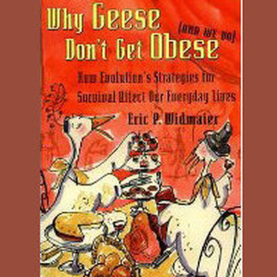 Printable Why Geese Don't Get Obese: (And We Do) Audiobook Cover Art