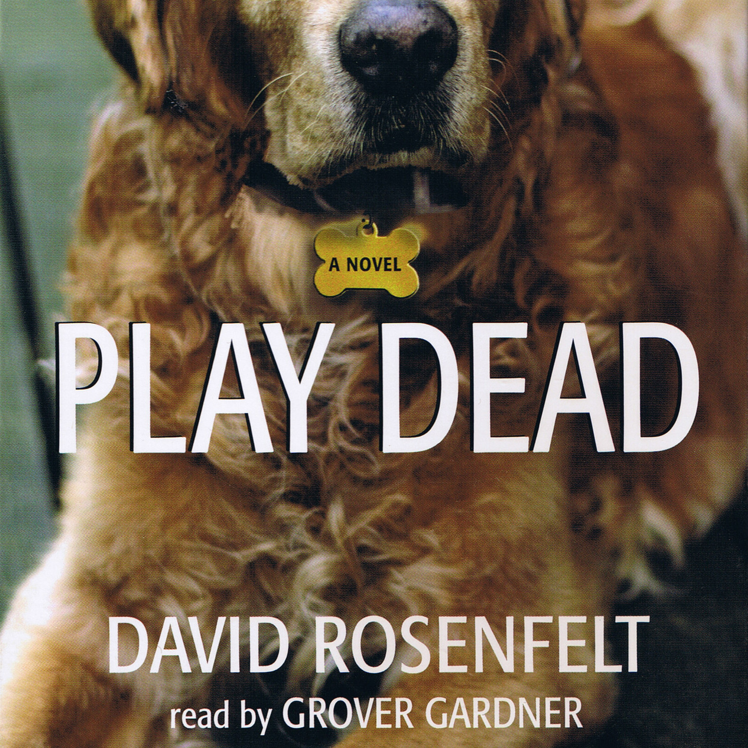 Printable Play Dead Audiobook Cover Art