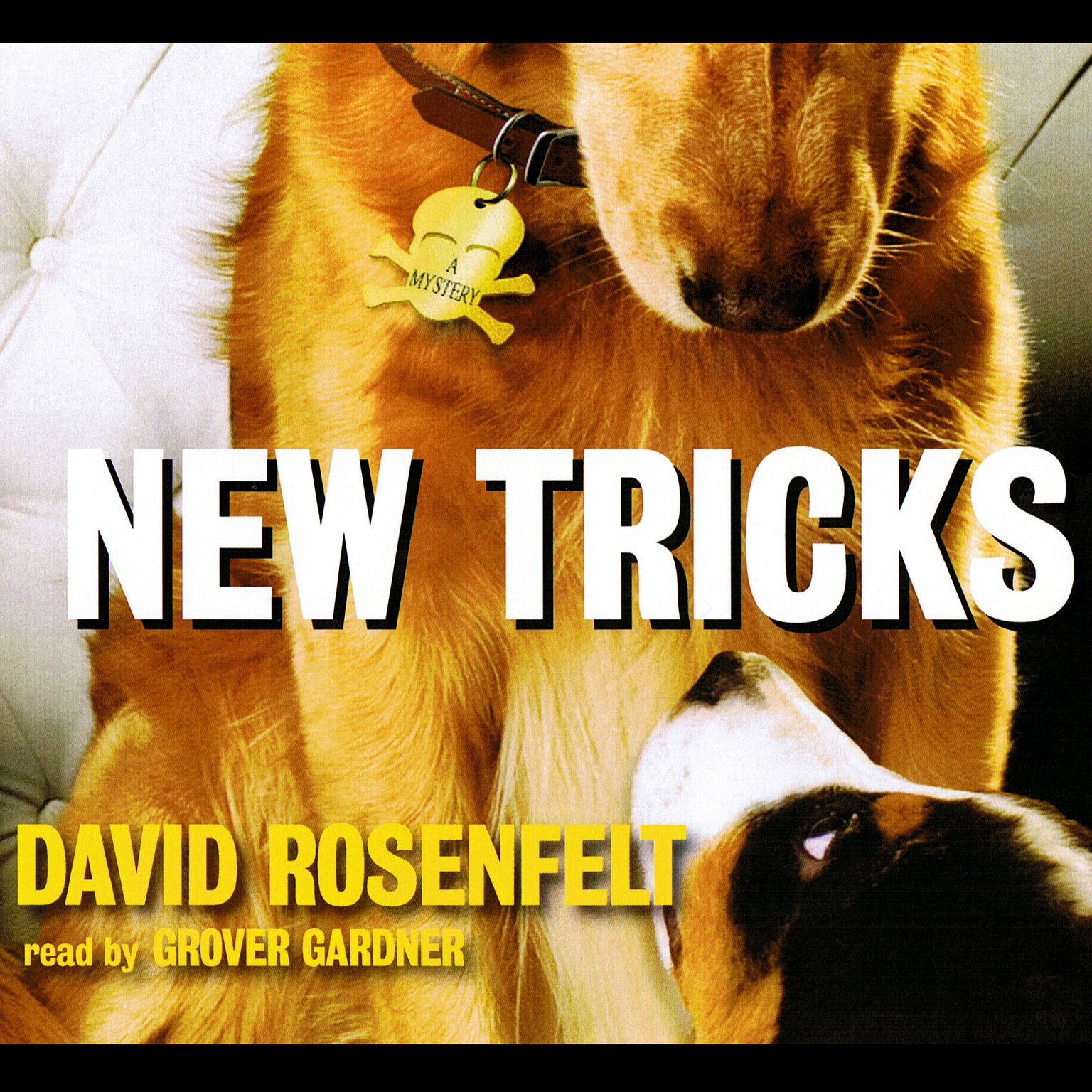 Printable New Tricks Audiobook Cover Art