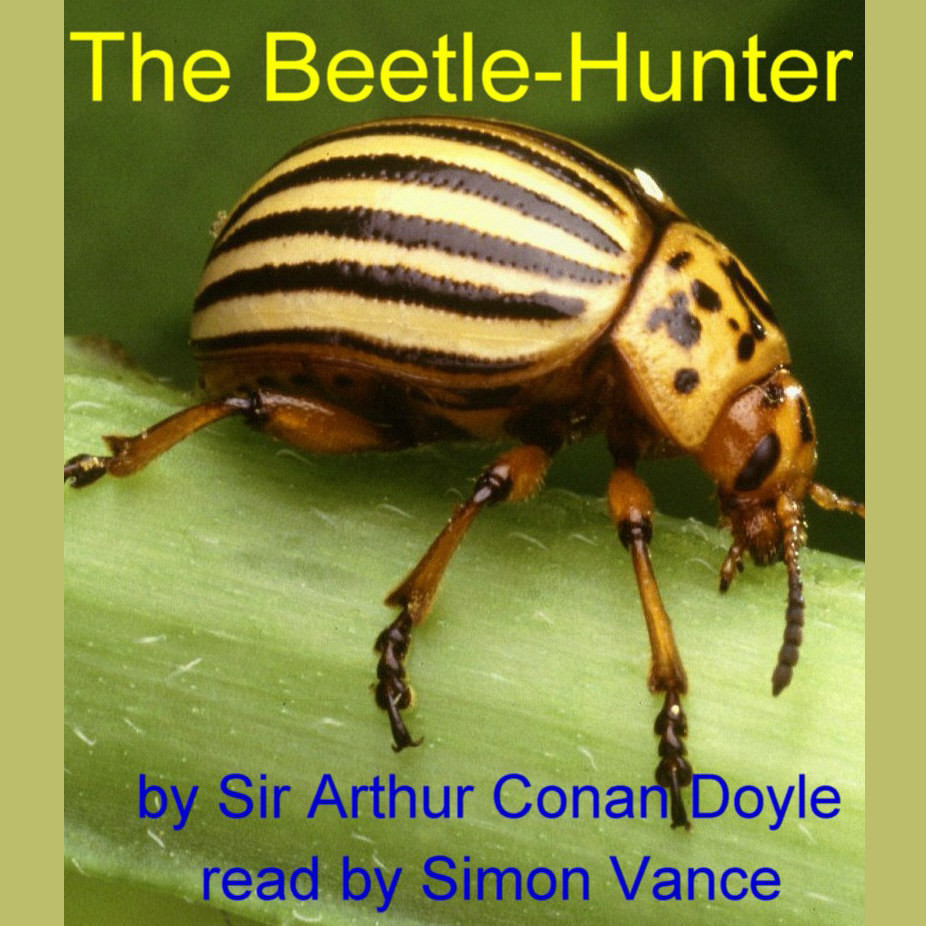 Printable The Beetle-Hunter Audiobook Cover Art