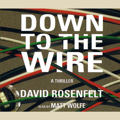 Down to the Wire Audiobook, by David Rosenfelt