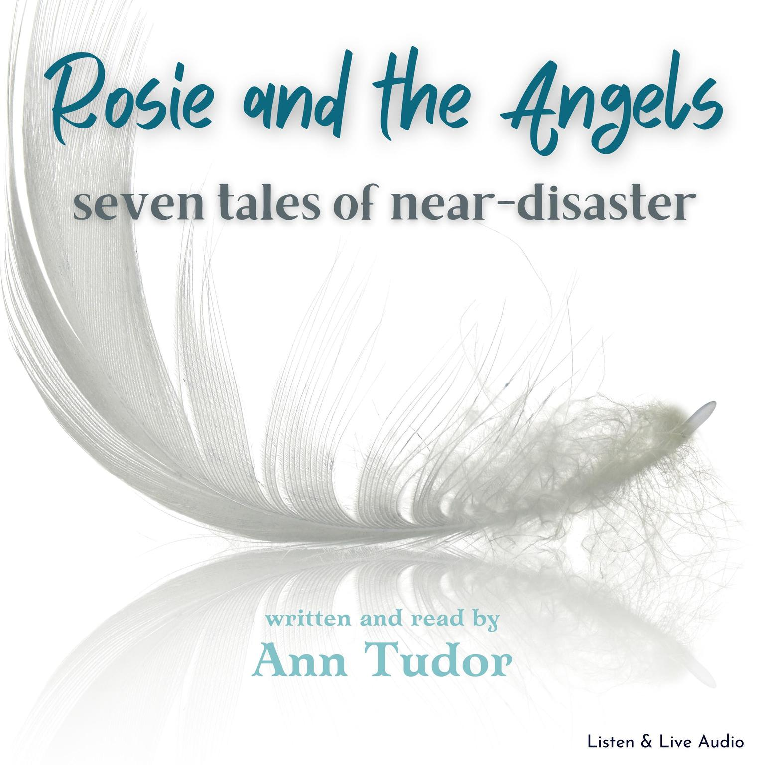 Printable Rosie and the Angels: Scenes from the Journey Audiobook Cover Art