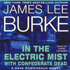 In the Electric Mist with Confederate Dead Audiobook, by