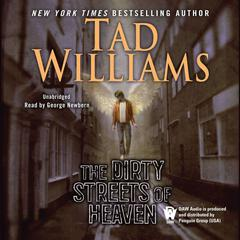 The Dirty Streets of Heaven: Volume One of Bobby Dollar Audiobook, by Tad Williams