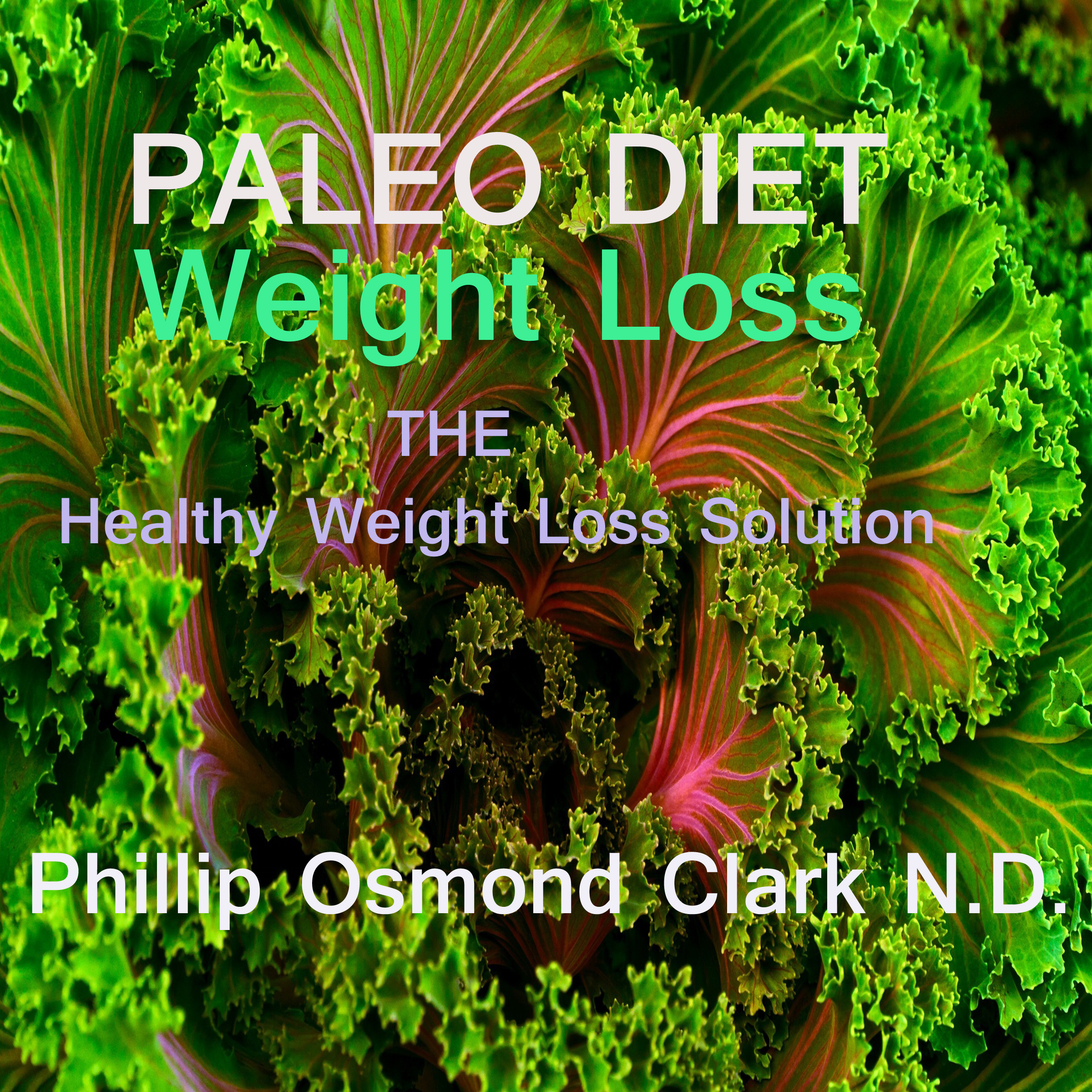 Printable Paleo Diet Weight Loss Audiobook Cover Art