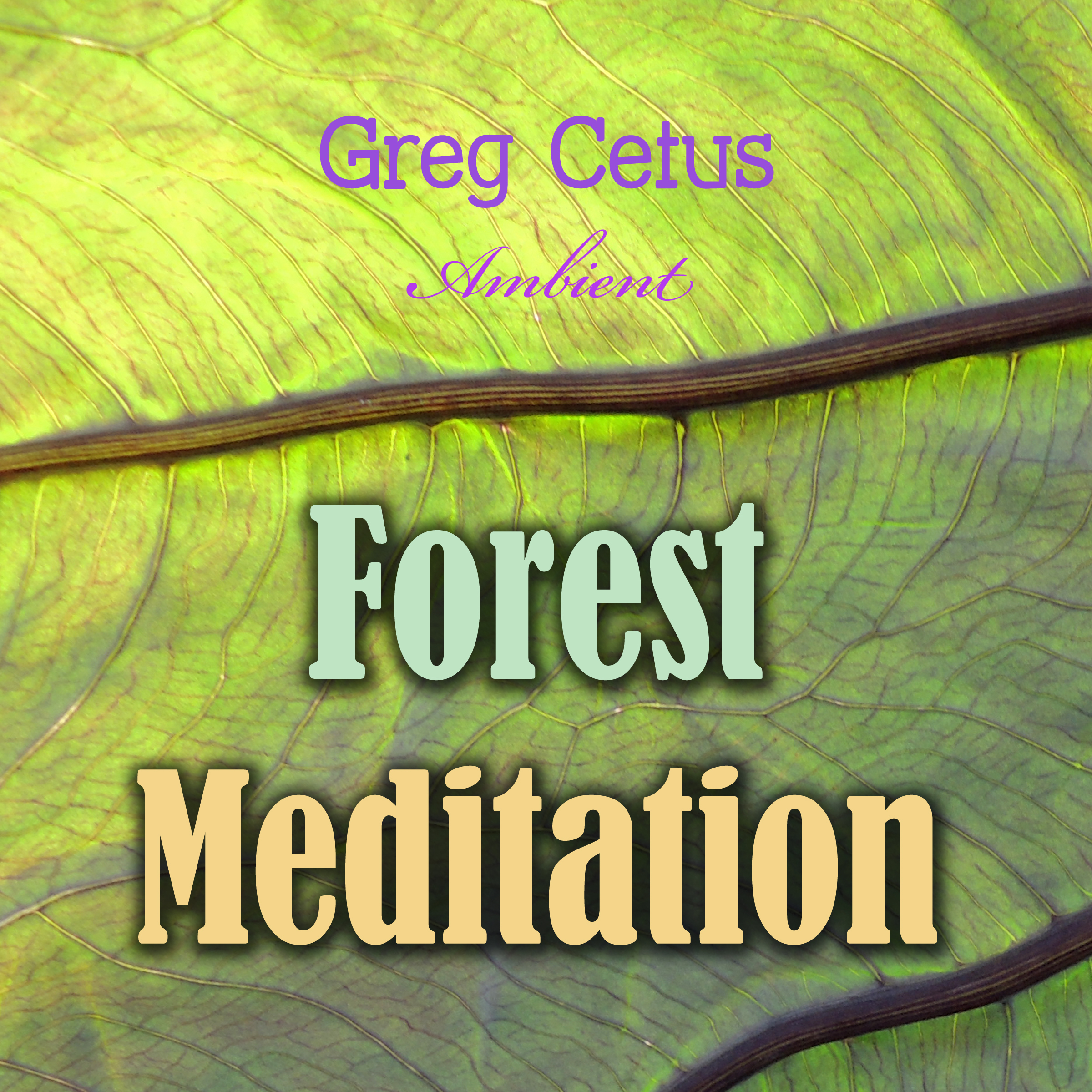 Printable Forest Meditation Audiobook Cover Art