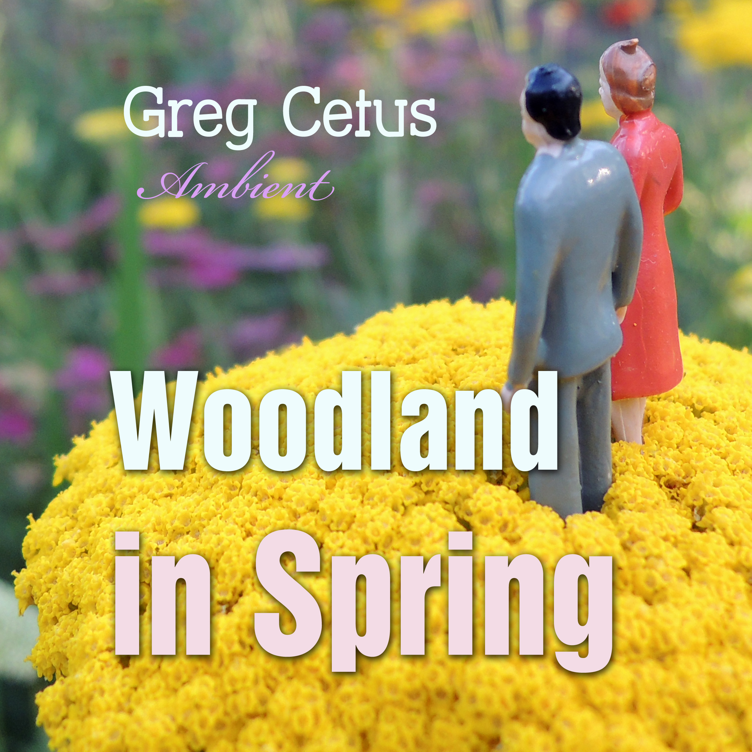 Printable Woodland in Spring: Ambient Soundscape for Mindfulness Audiobook Cover Art