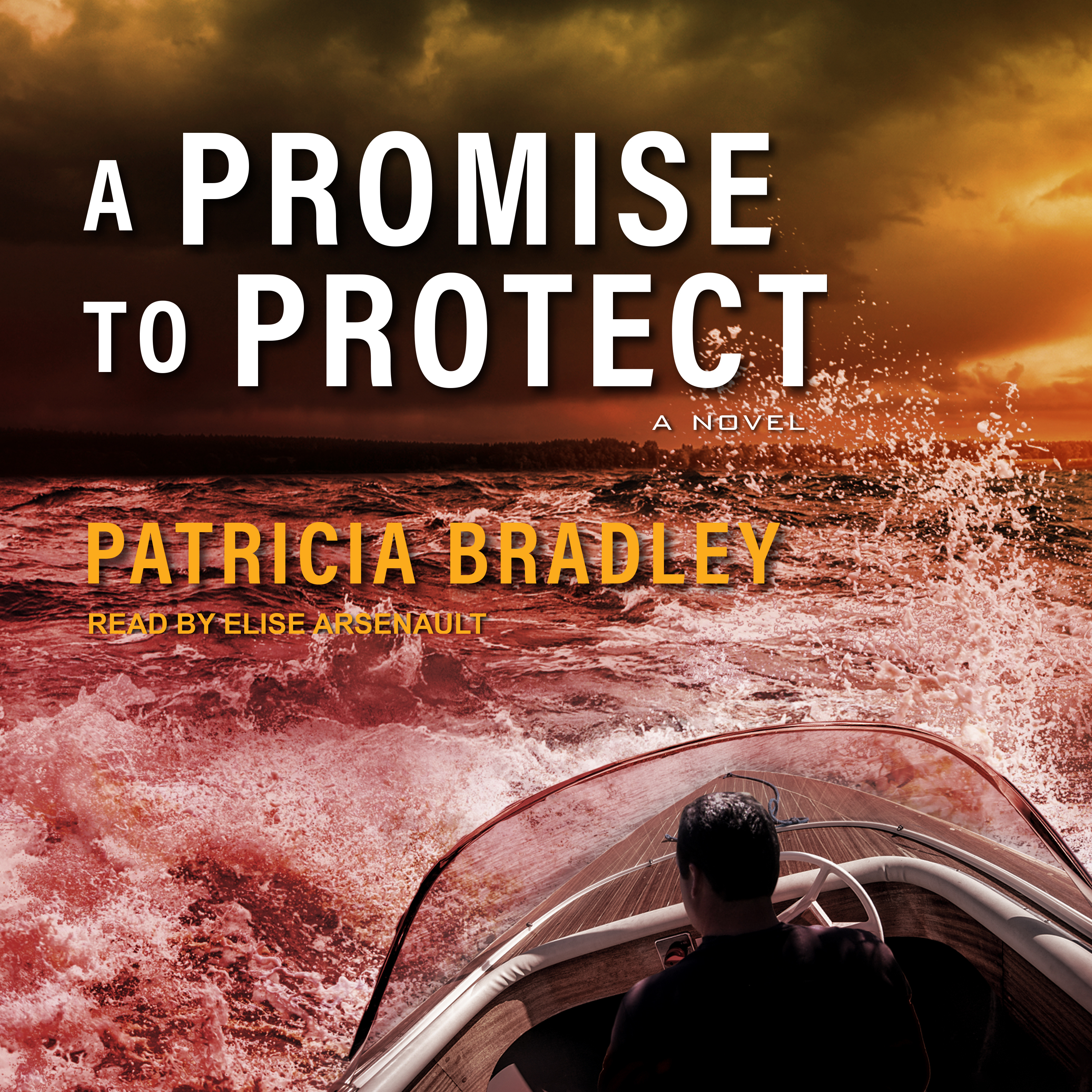 Printable A Promise to Protect Audiobook Cover Art