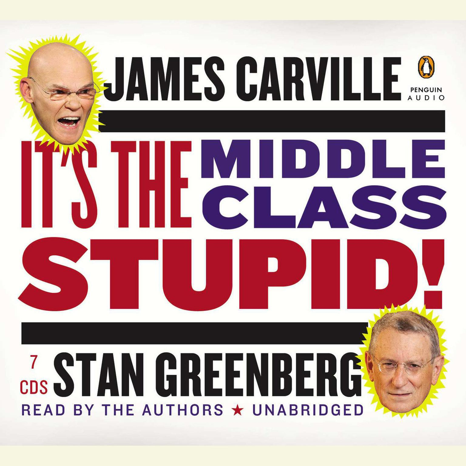Printable It's the Middle Class, Stupid! Audiobook Cover Art