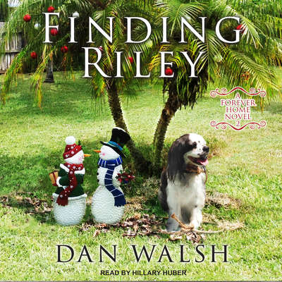 Finding Riley  Audiobook, by Dan Walsh