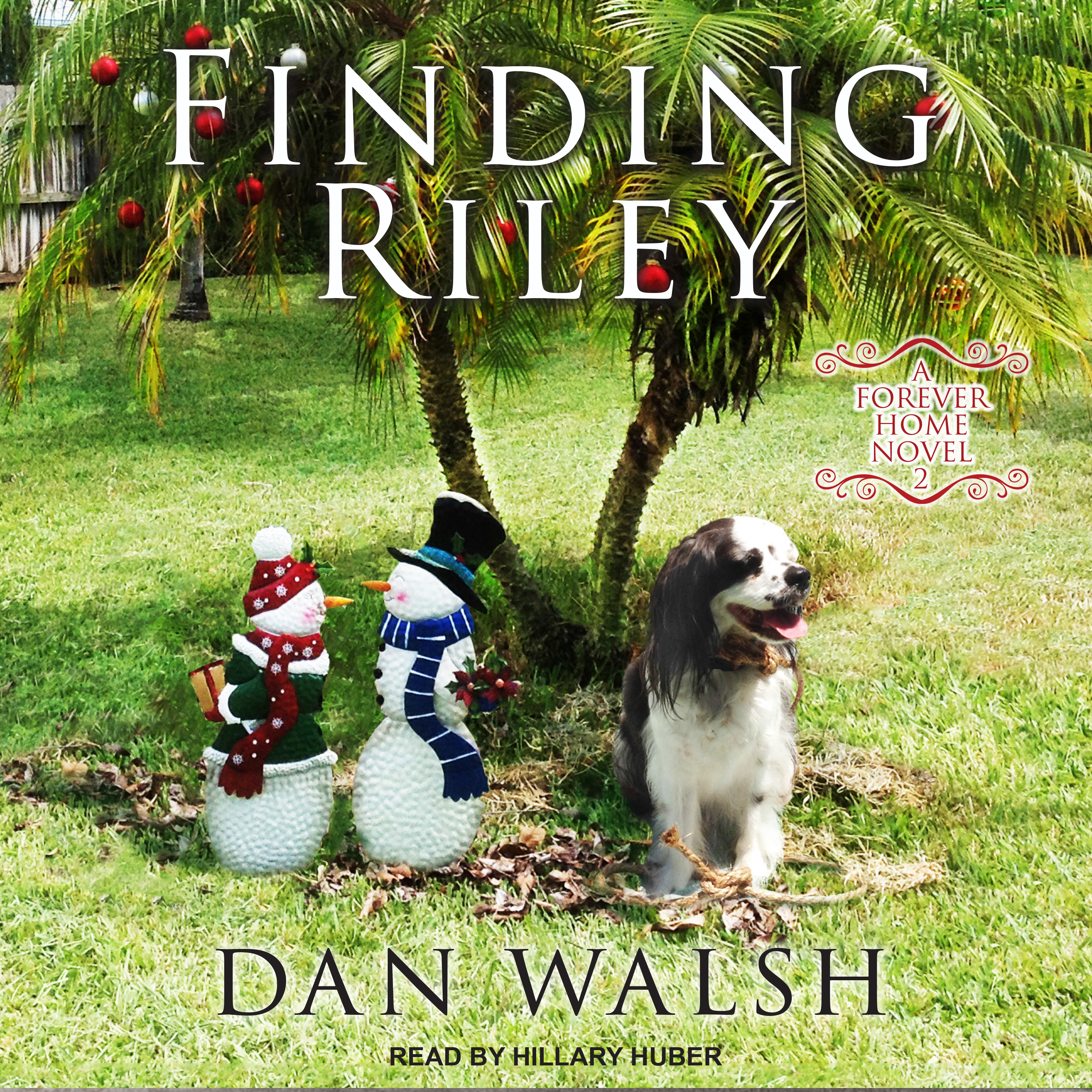 Printable Finding Riley  Audiobook Cover Art