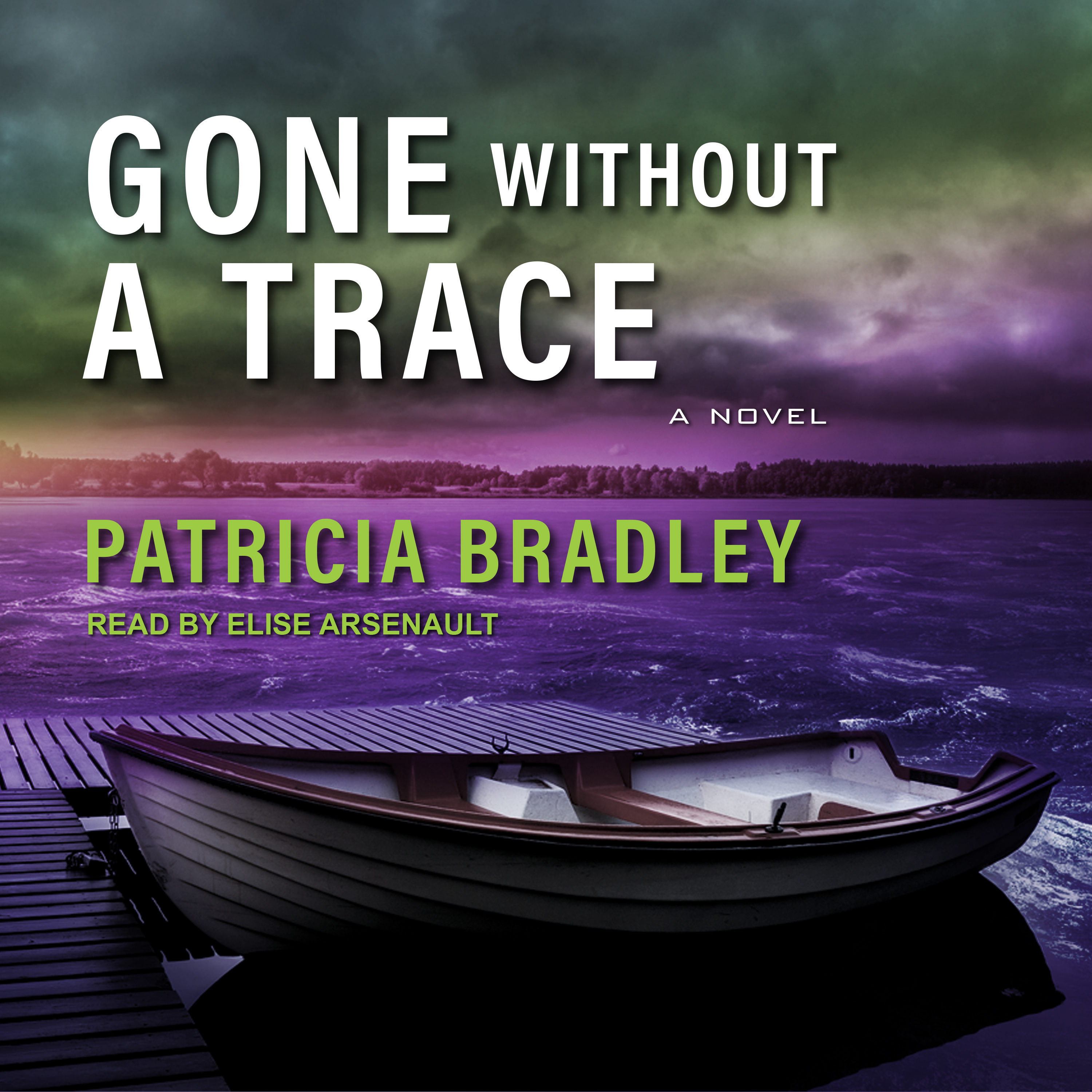Printable Gone without a Trace Audiobook Cover Art