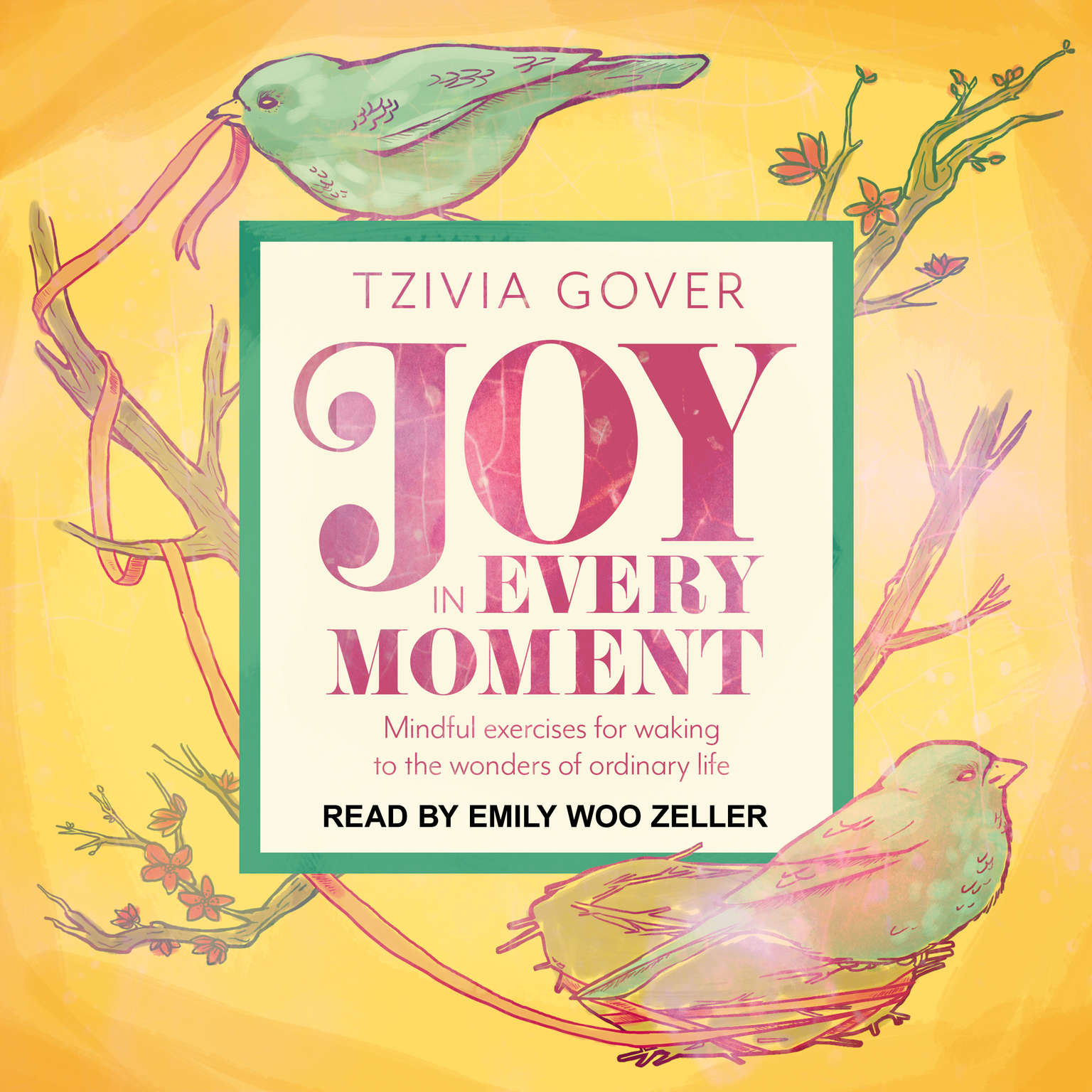 Joy in Every Moment: Mindful Exercises for Waking Up to the Wonders of Ordinary Life Audiobook, by Tzivia Gover