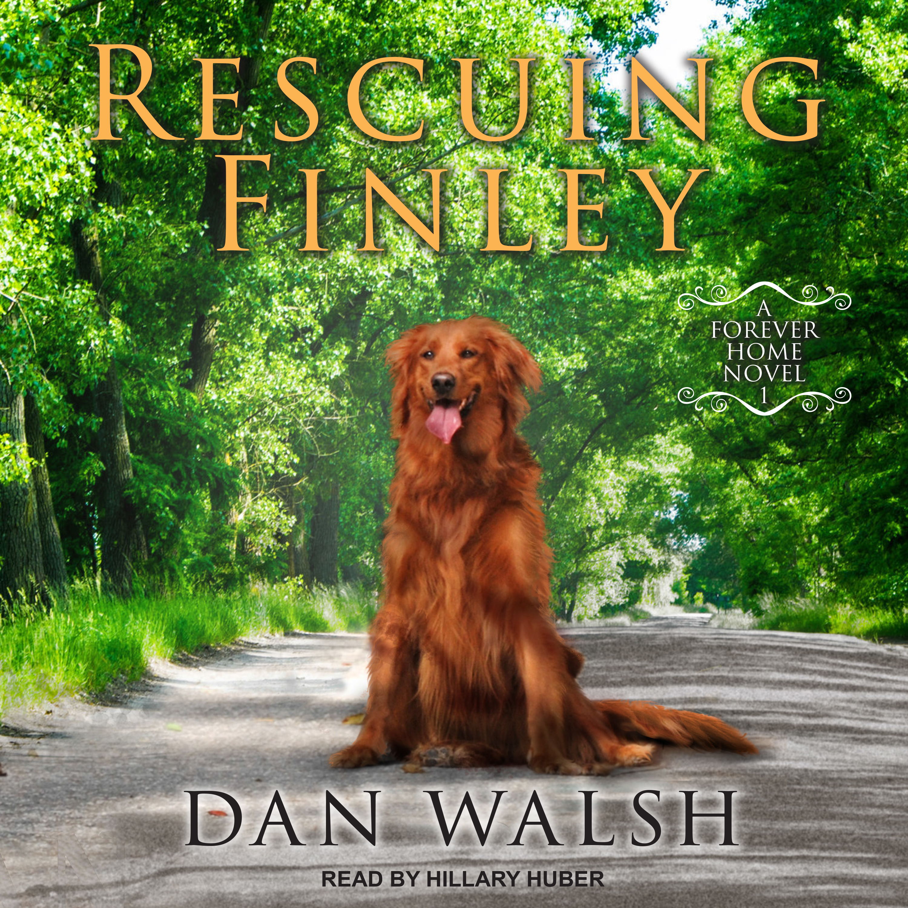 Printable Rescuing Finley  Audiobook Cover Art