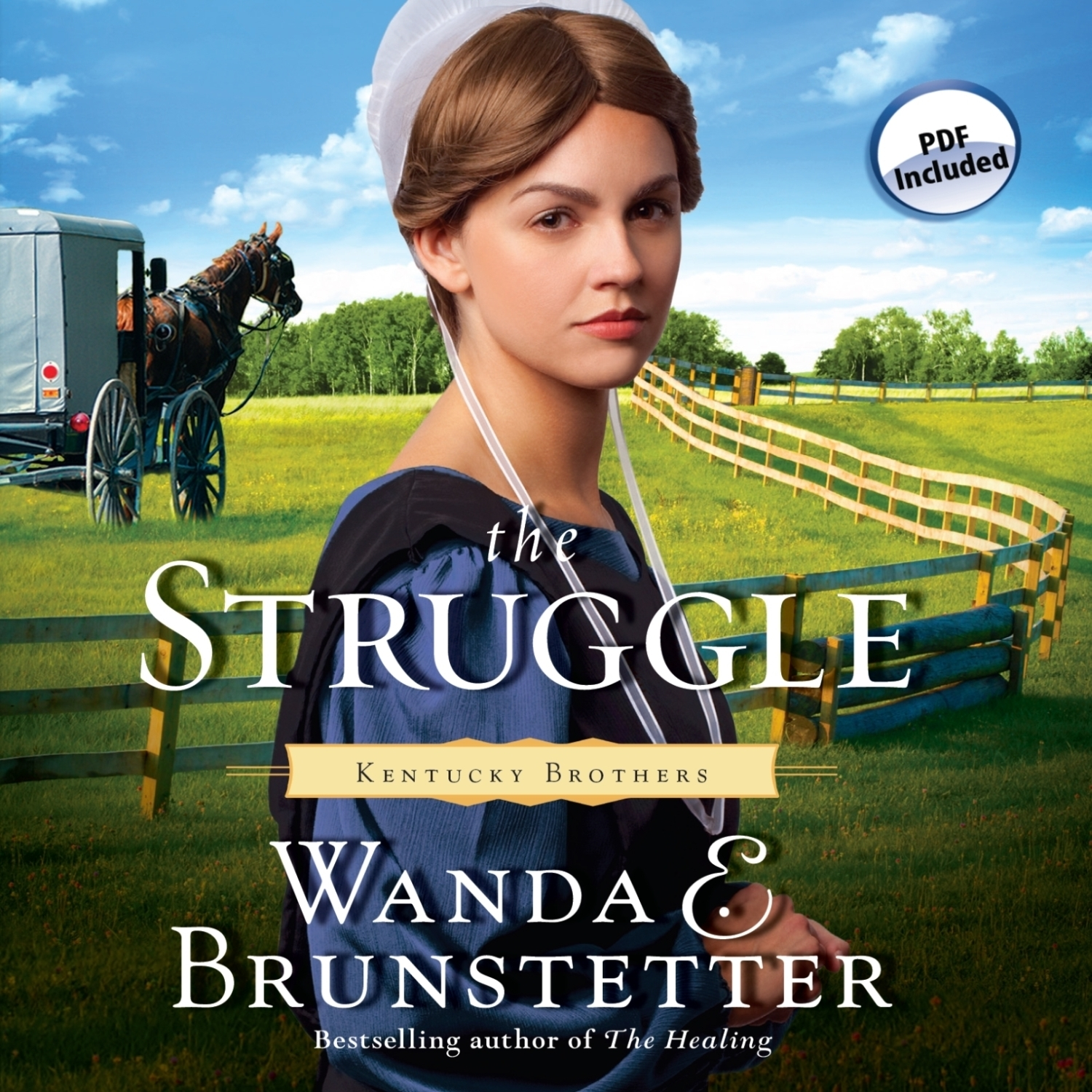 Printable The Struggle Audiobook Cover Art