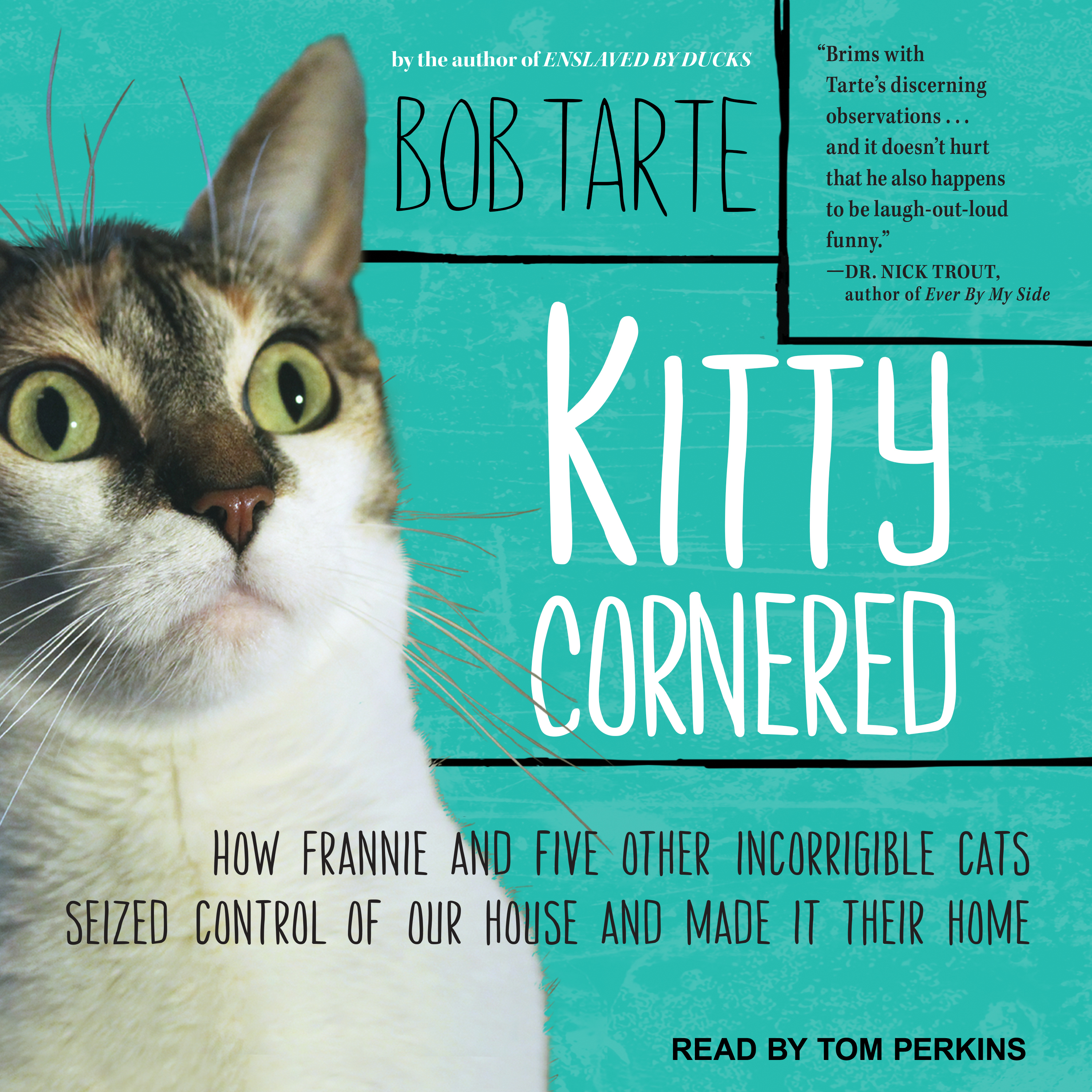 Printable Kitty Cornered: How Frannie and Five Other Incorrigible Cats Seized Control of Our House and Made It Their Home Audiobook Cover Art