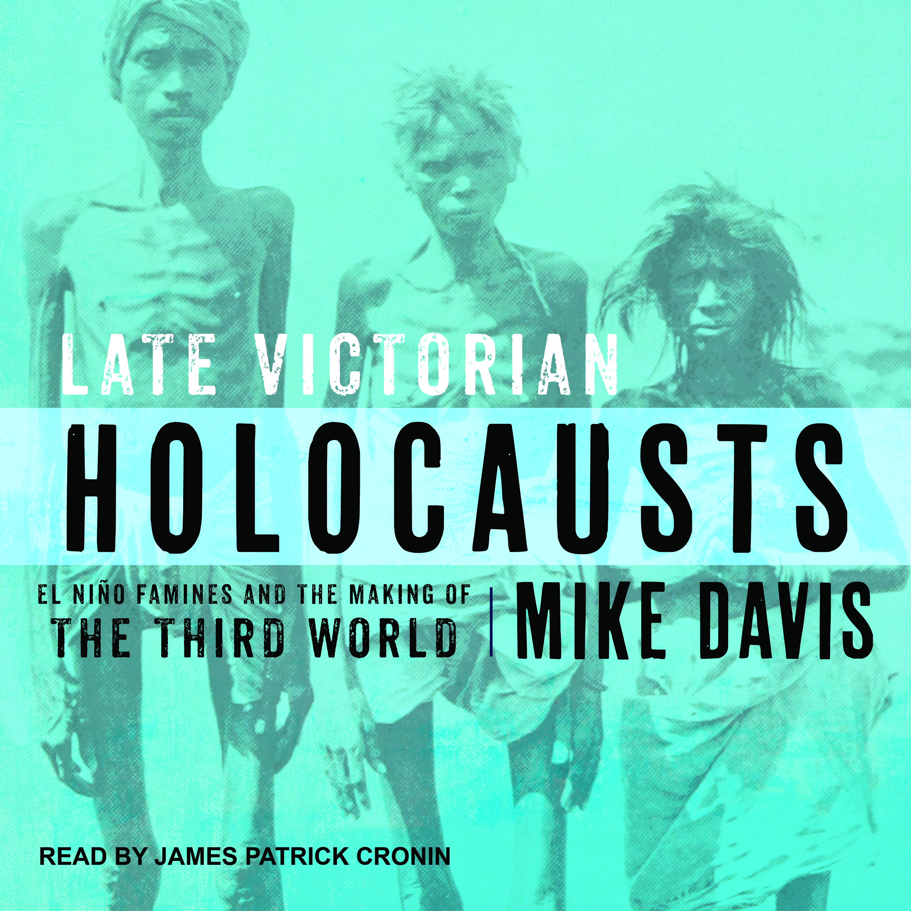 Printable Late Victorian Holocausts: El Niño Famines and the Making of the Third World Audiobook Cover Art