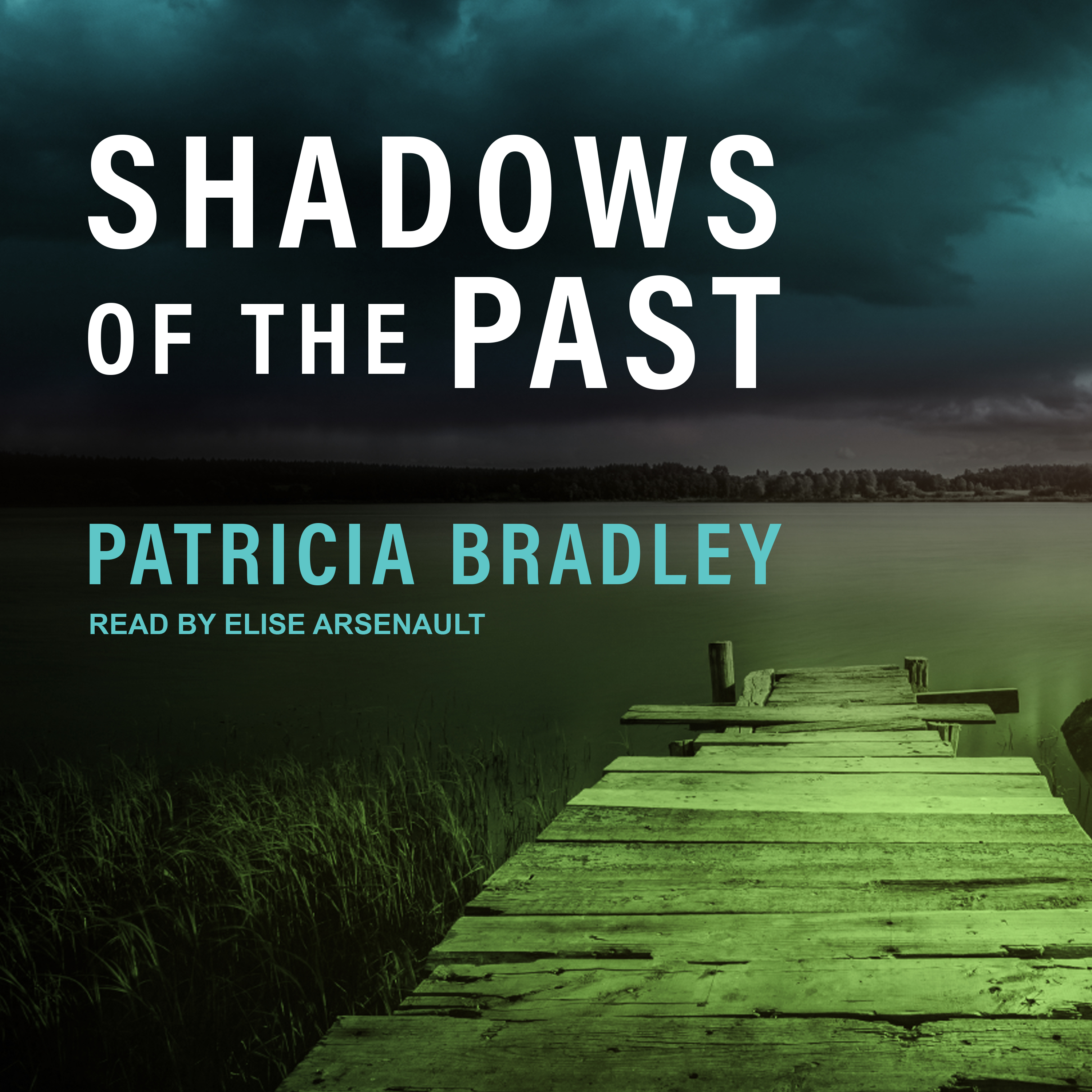 Printable Shadows of the Past Audiobook Cover Art