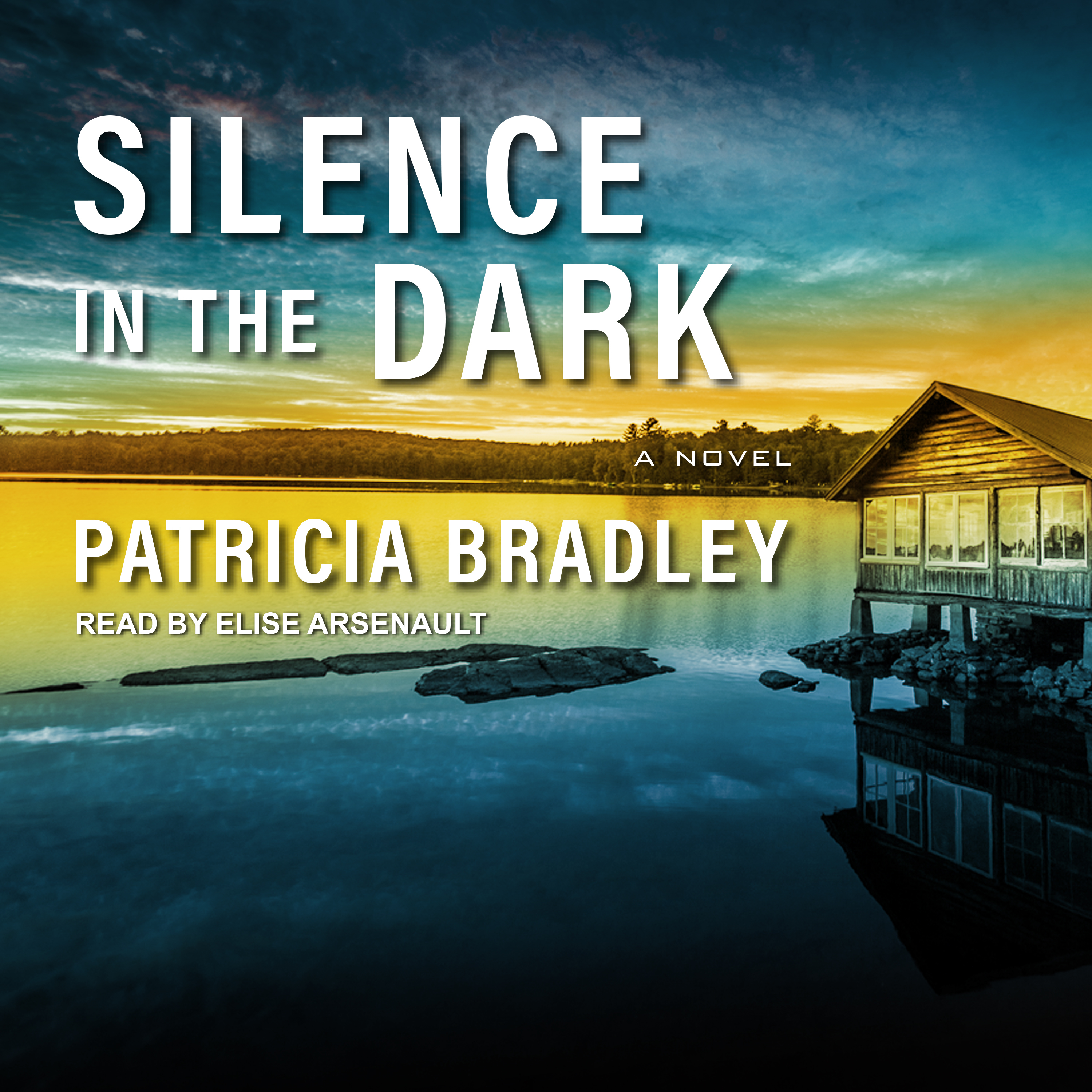 Printable Silence in the Dark Audiobook Cover Art