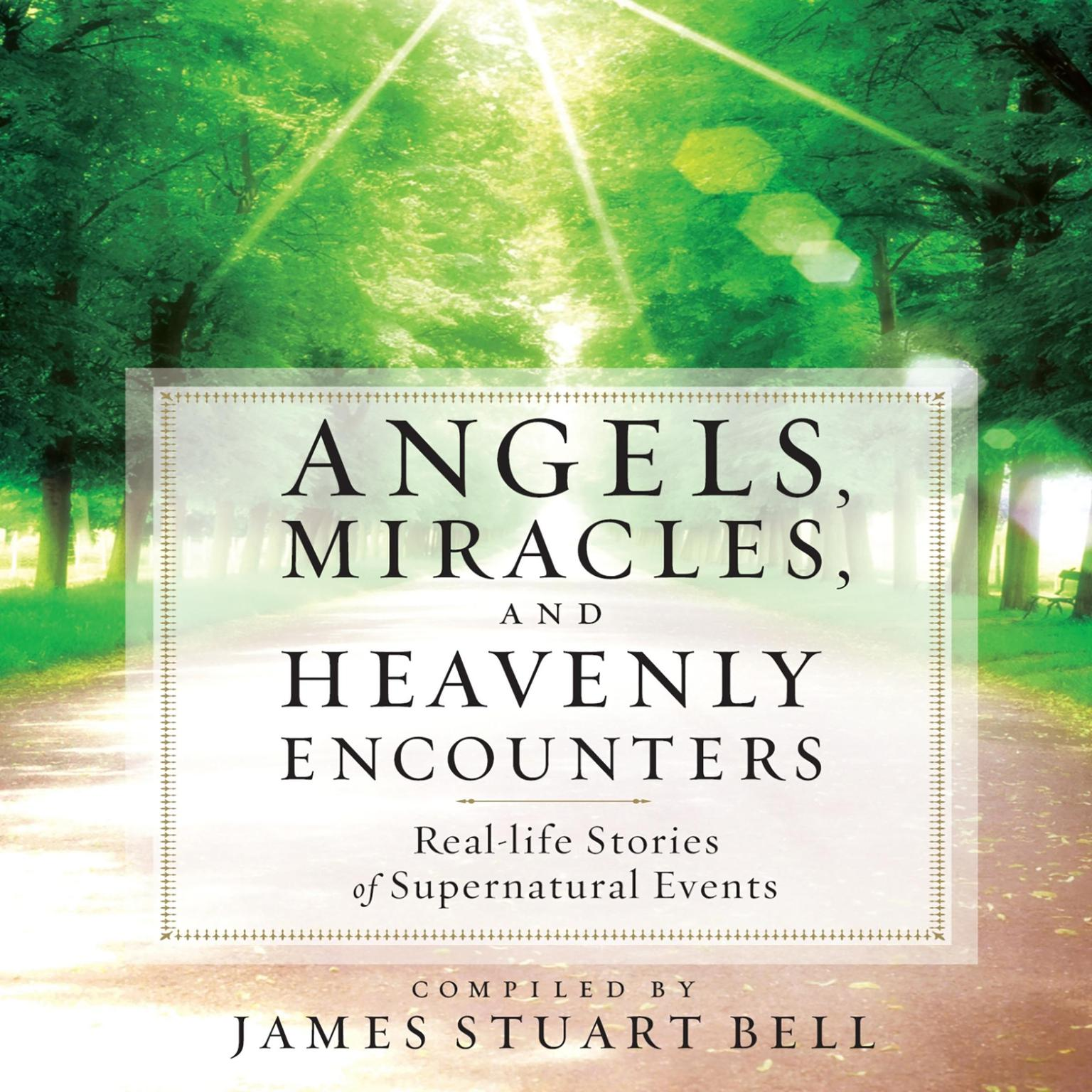 Printable Angels, Miracles, and Heavenly Encounters: Real-Life Stories of Supernatural Events Audiobook Cover Art