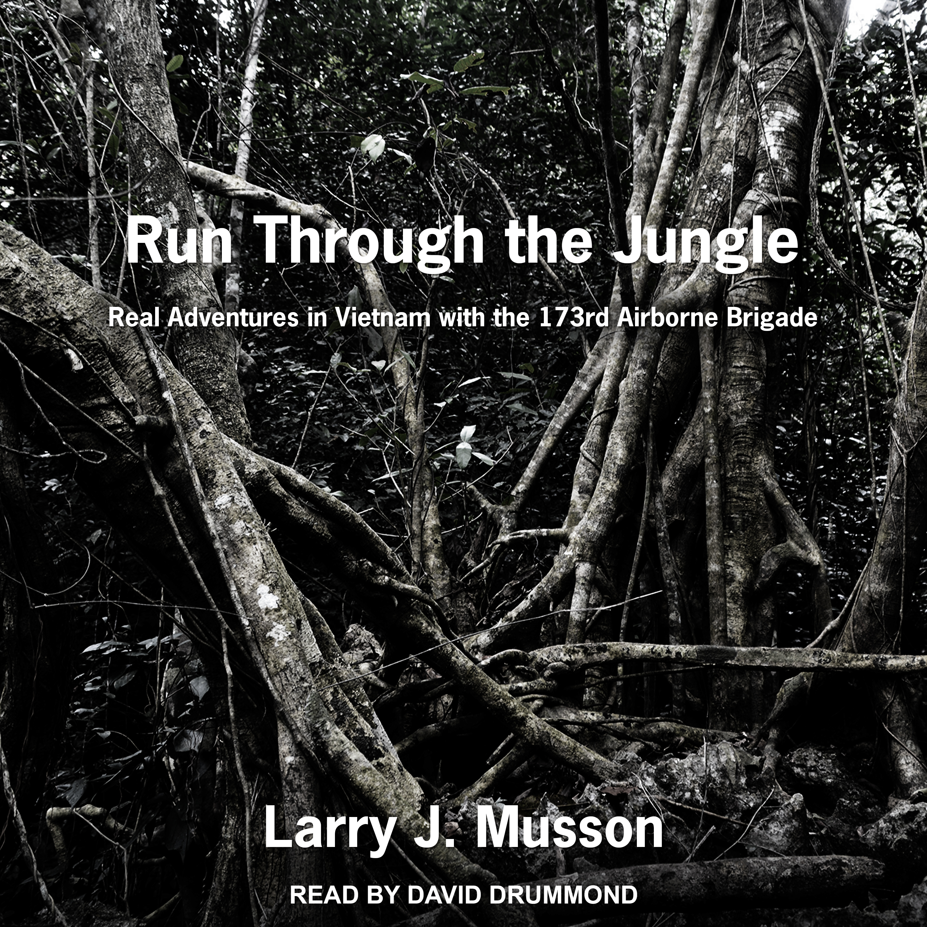 Printable Run Through the Jungle: Real Adventures in Vietnam with the 173rd Airborne Brigade Audiobook Cover Art