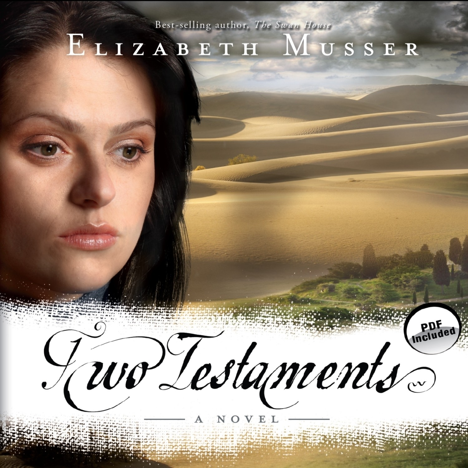 Printable Two Testaments: A Novel Audiobook Cover Art