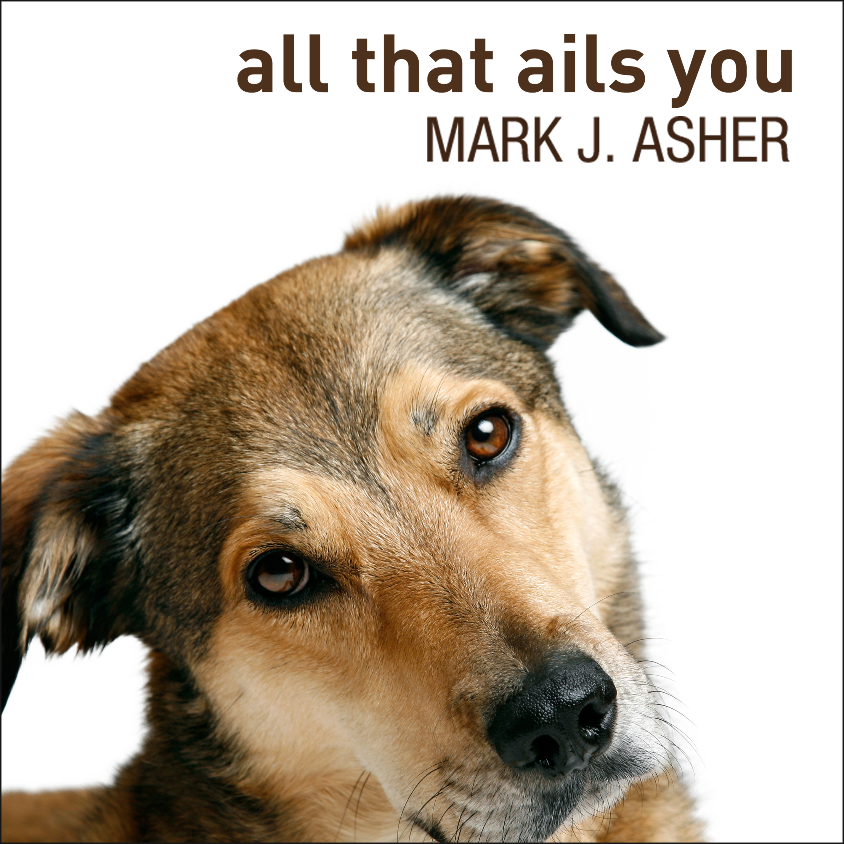 Printable All That Ails You: The Adventures of a Canine Caregiver Audiobook Cover Art