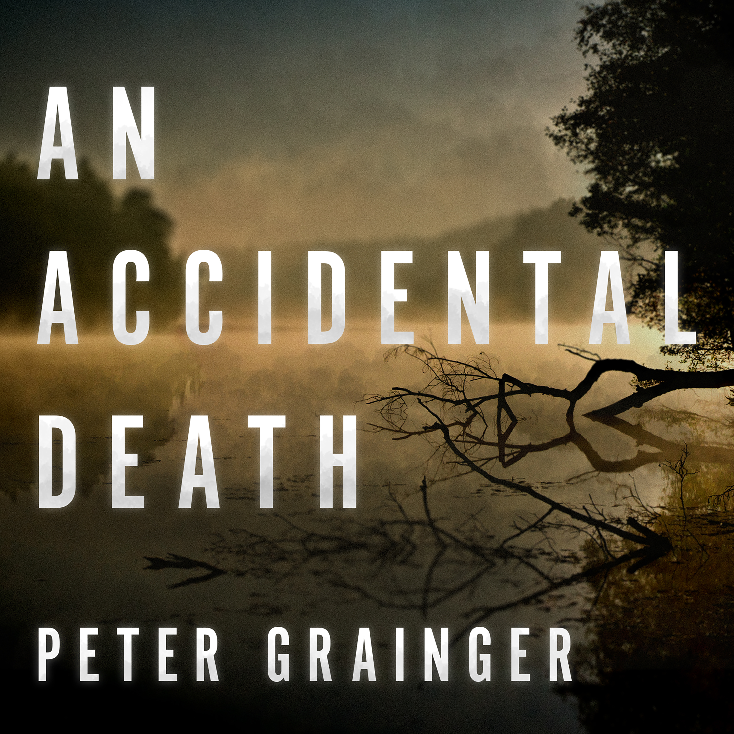 Printable An Accidental Death Audiobook Cover Art