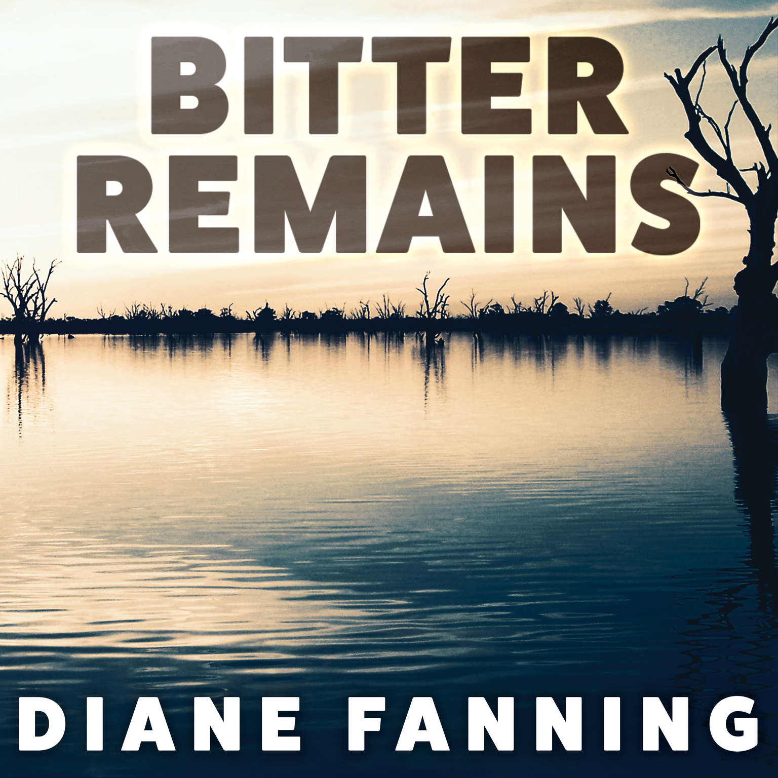 Bitter Remains: A Custody Battle, A Gruesome Crime, and the Mother Who Paid the Ultimate Price Audiobook, by Diane Fanning