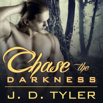 Chase the Darkness Audiobook, by J. D. Tyler