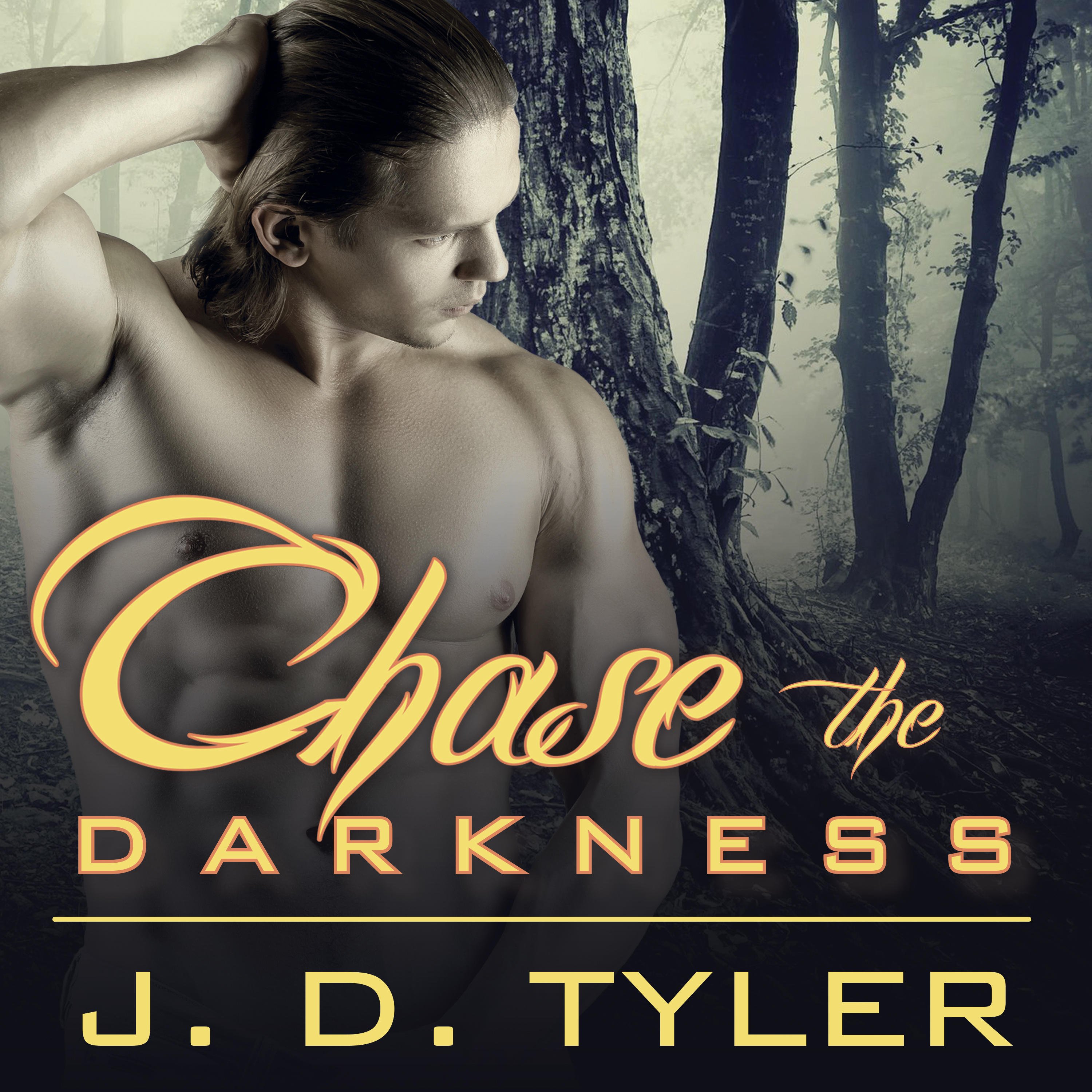 Printable Chase the Darkness Audiobook Cover Art