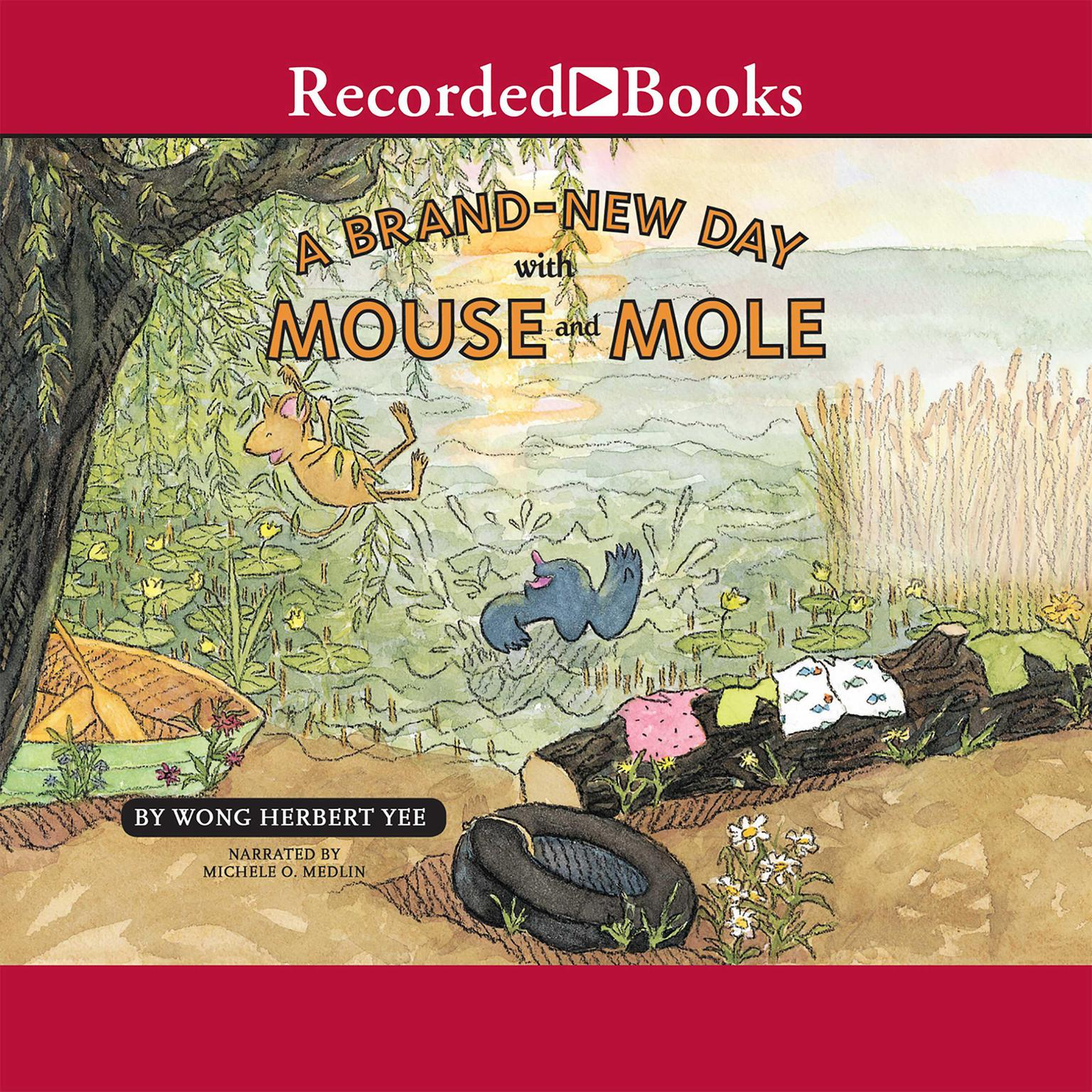 Printable A Brand-New Day with Mouse and Mole Audiobook Cover Art
