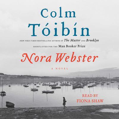 Nora Webster: A Novel Audiobook, by Colm Tóibín
