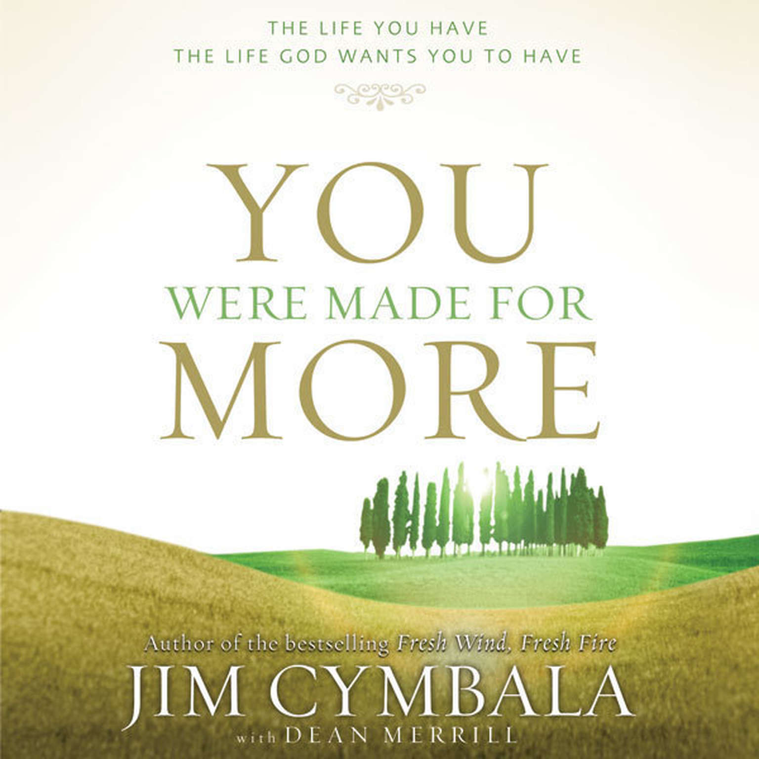 Printable You Were Made for More: The Life You Have, the Life God Wants You to Have Audiobook Cover Art