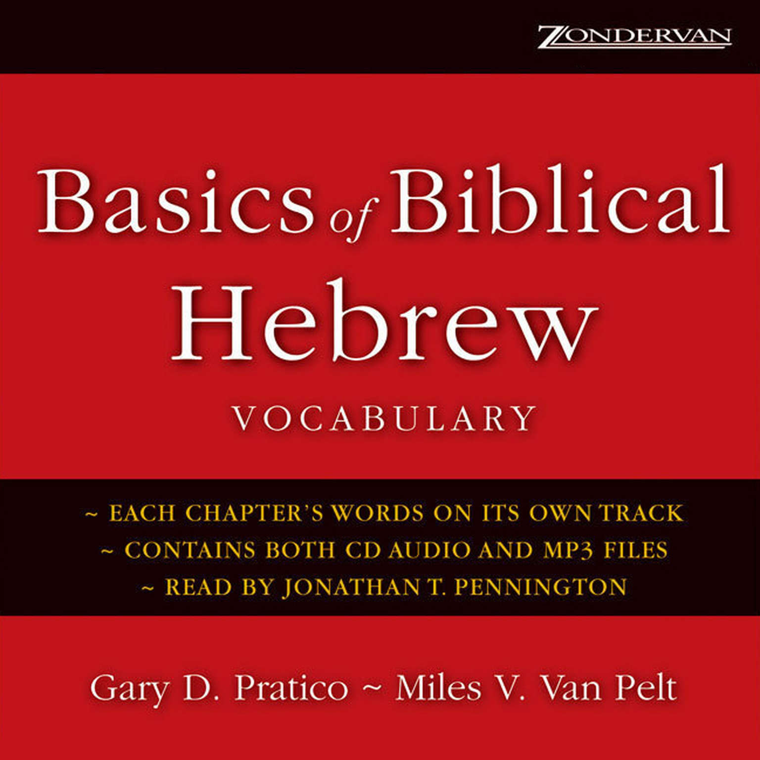 Printable Basics of Biblical Hebrew Vocabulary Audiobook Cover Art